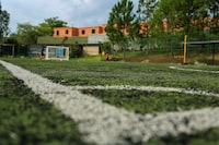 green and white soccer field