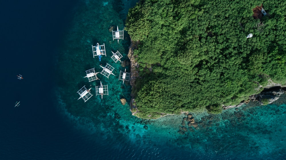 aerial photography of several white boats near island