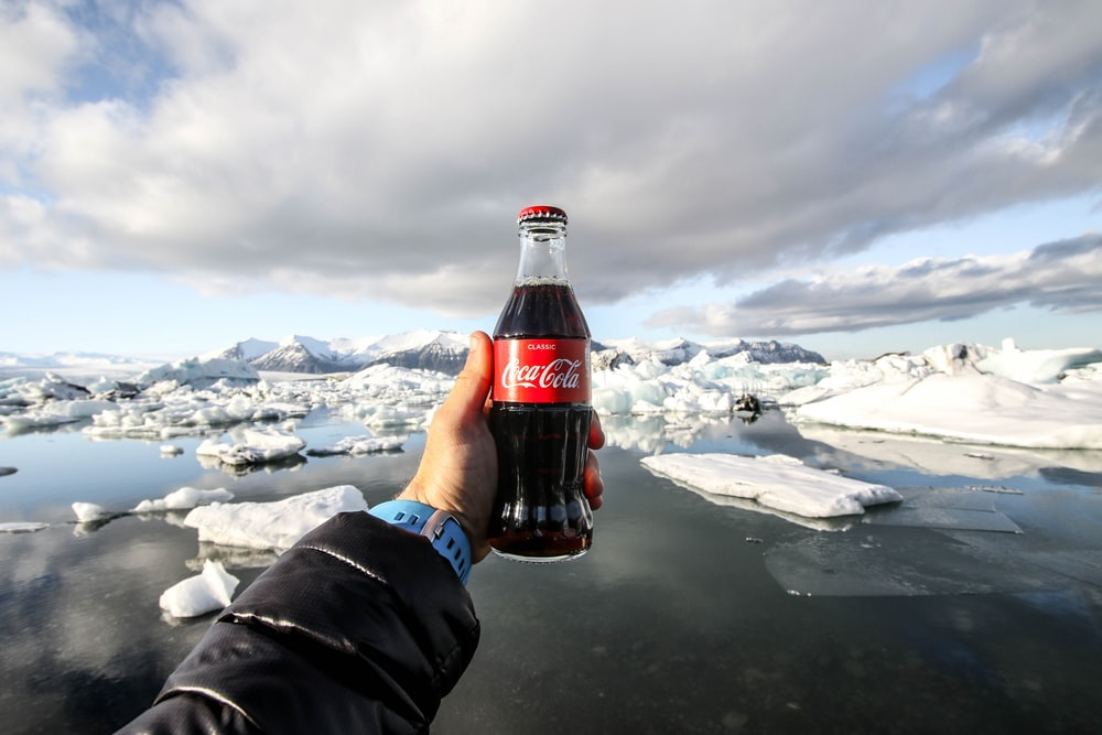 person showing photo of bottle of coke in front of icebergs