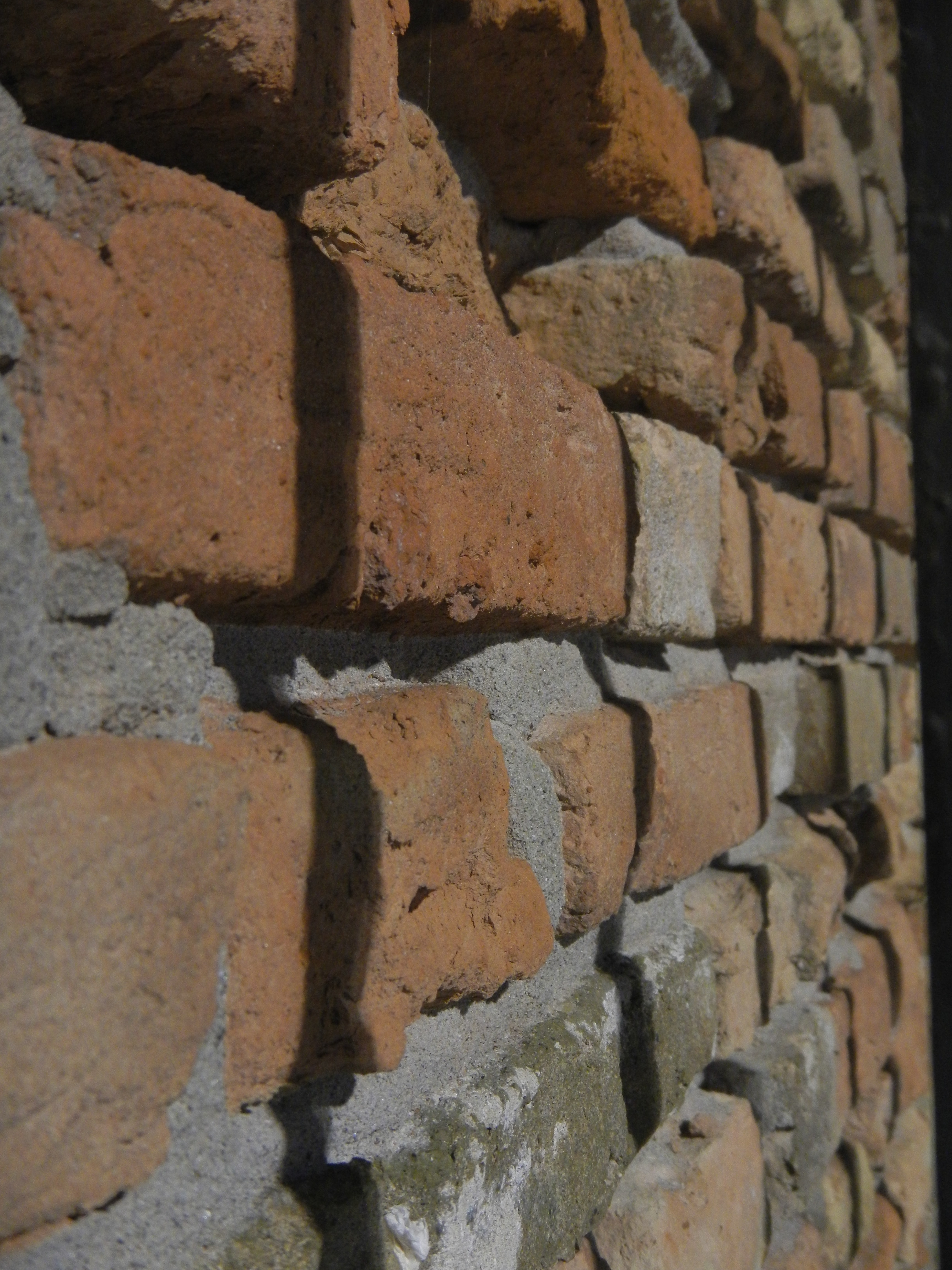 A macro shot from the side, capturing a traditional brick wall.