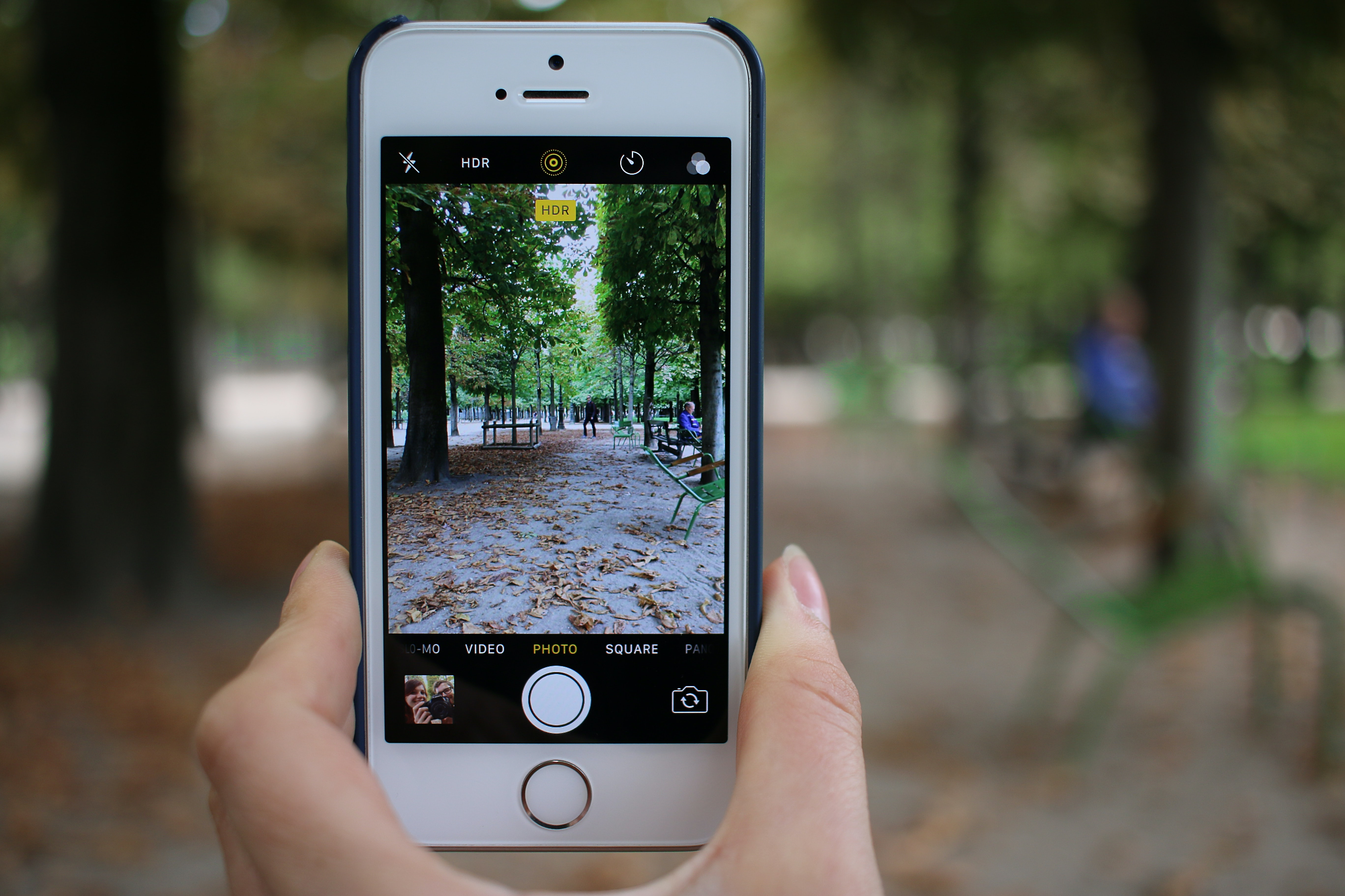 A woman's hand taking a photo of a park while holding an iPhone mobile smartphone.