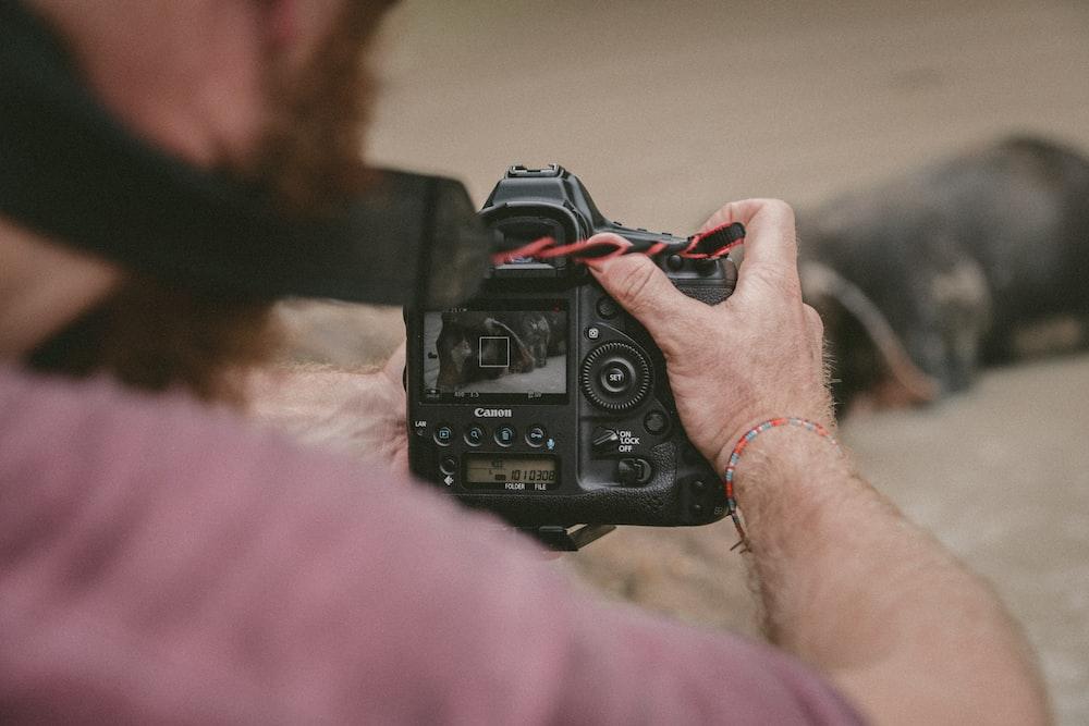 person holding black camera taking photo of animal