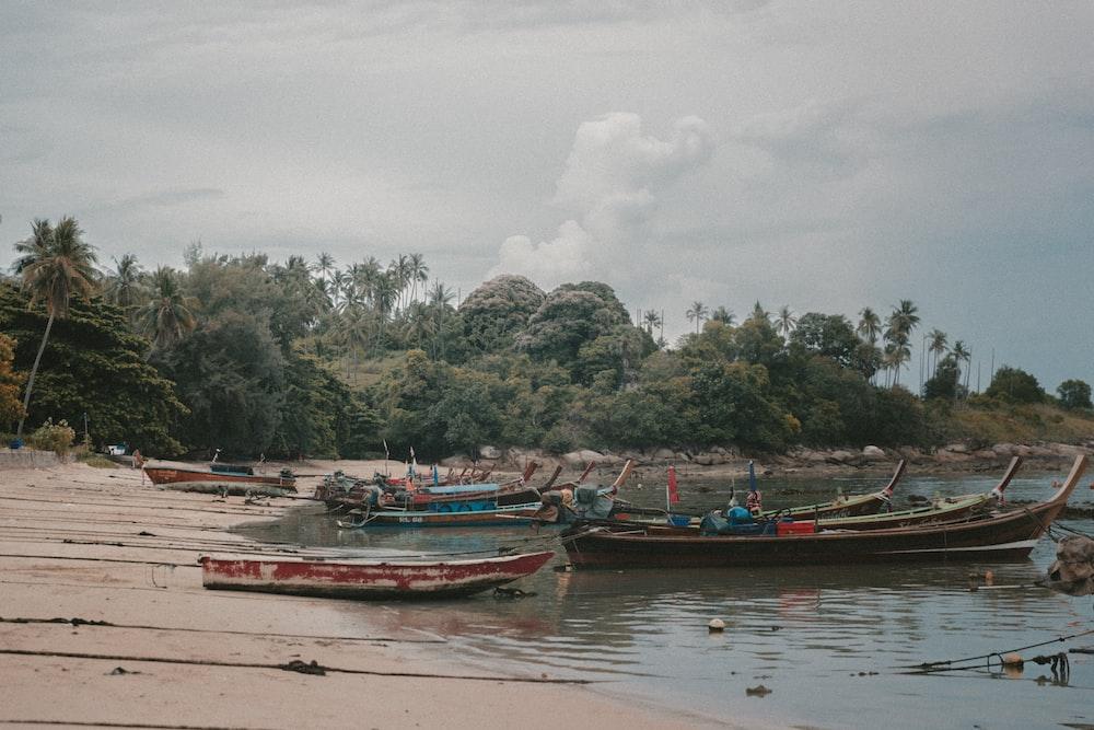 boat on seashore during daytime