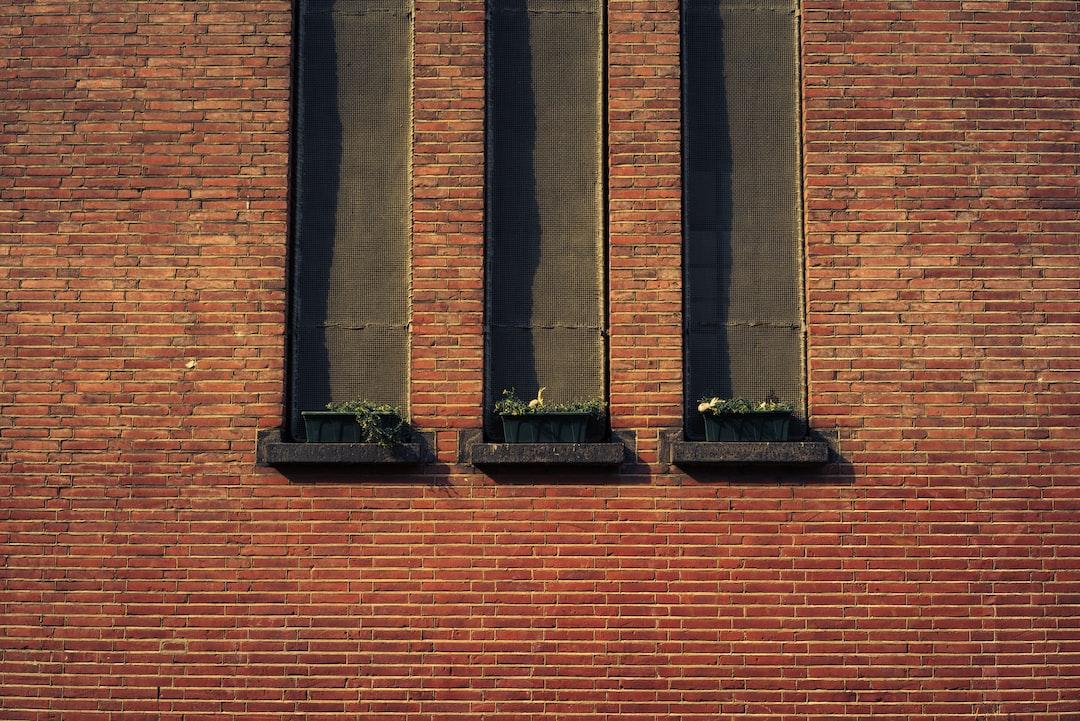 Three Somber Windows