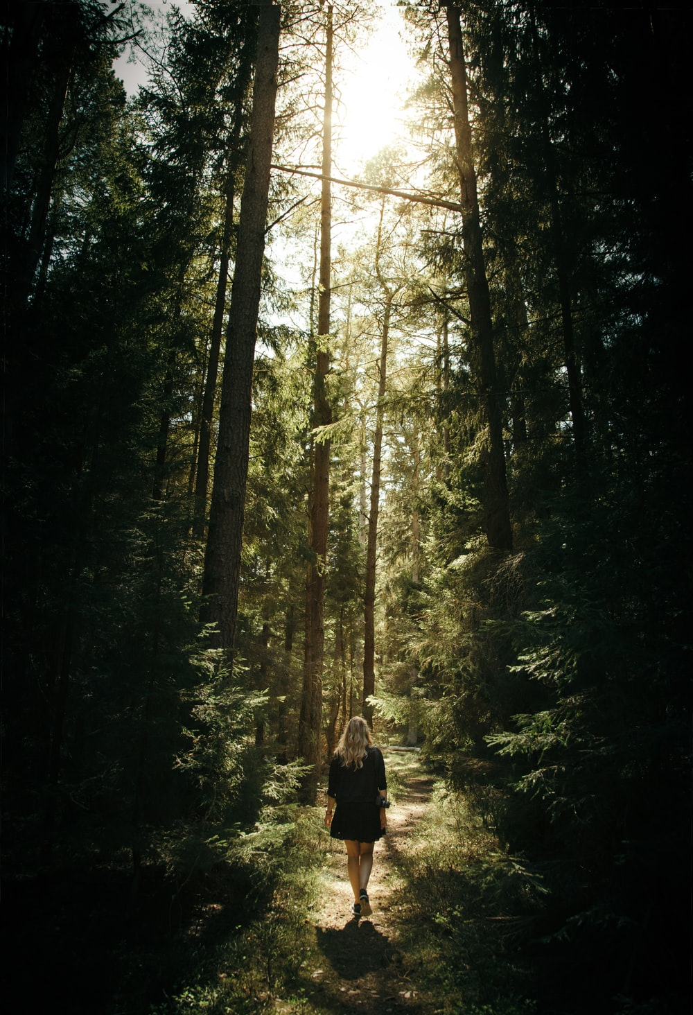 woman walking in the forest