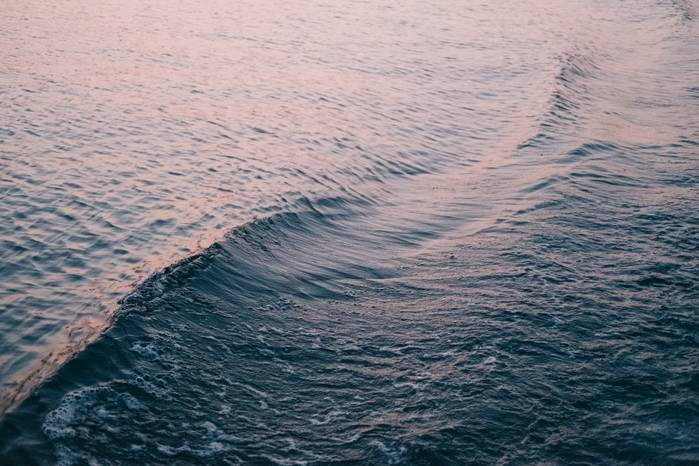 closeup photography of sae waves