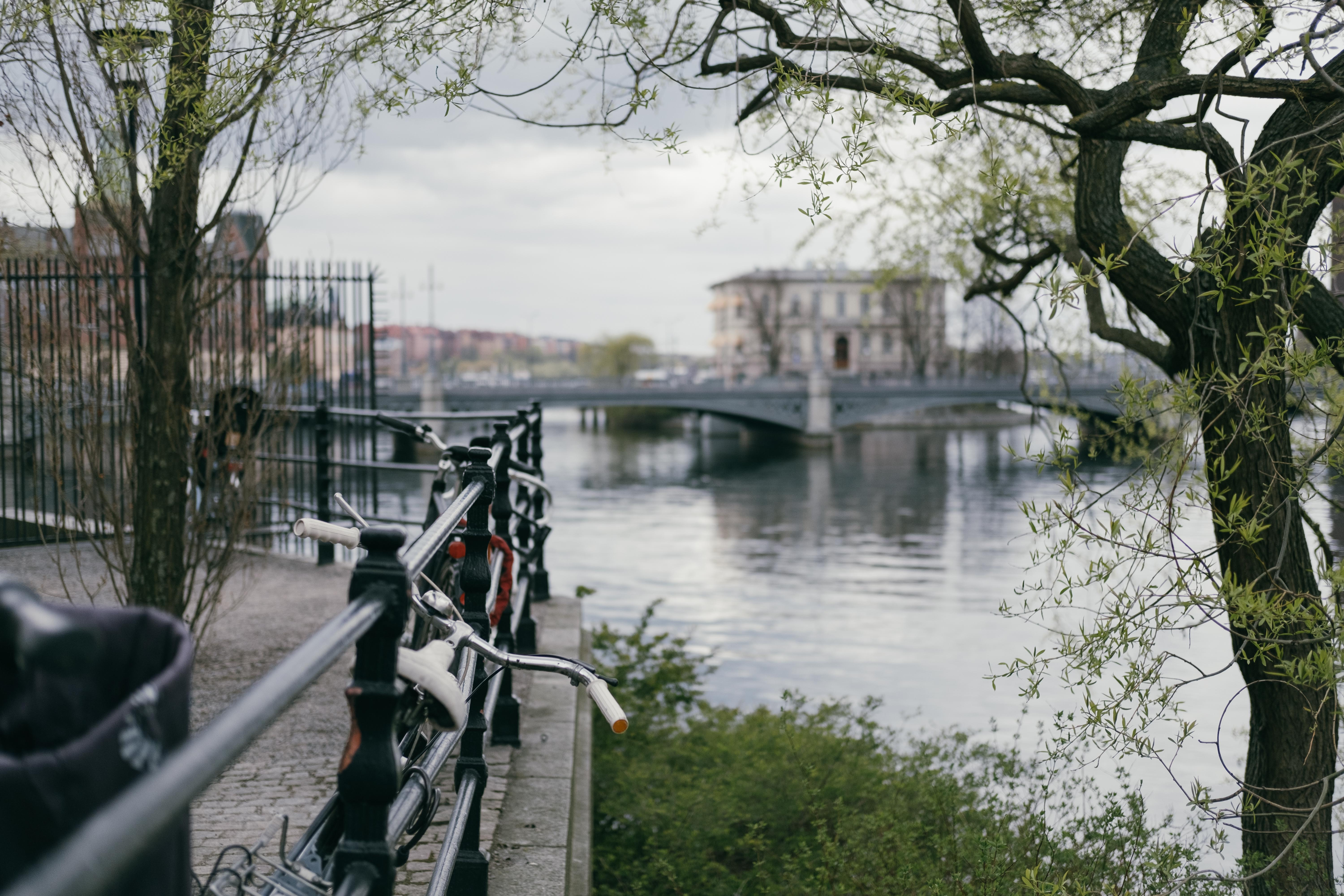 shallow focus photo of bicycles