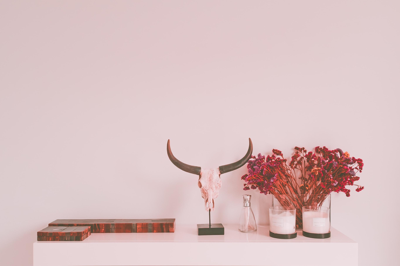 animal skull table decor
