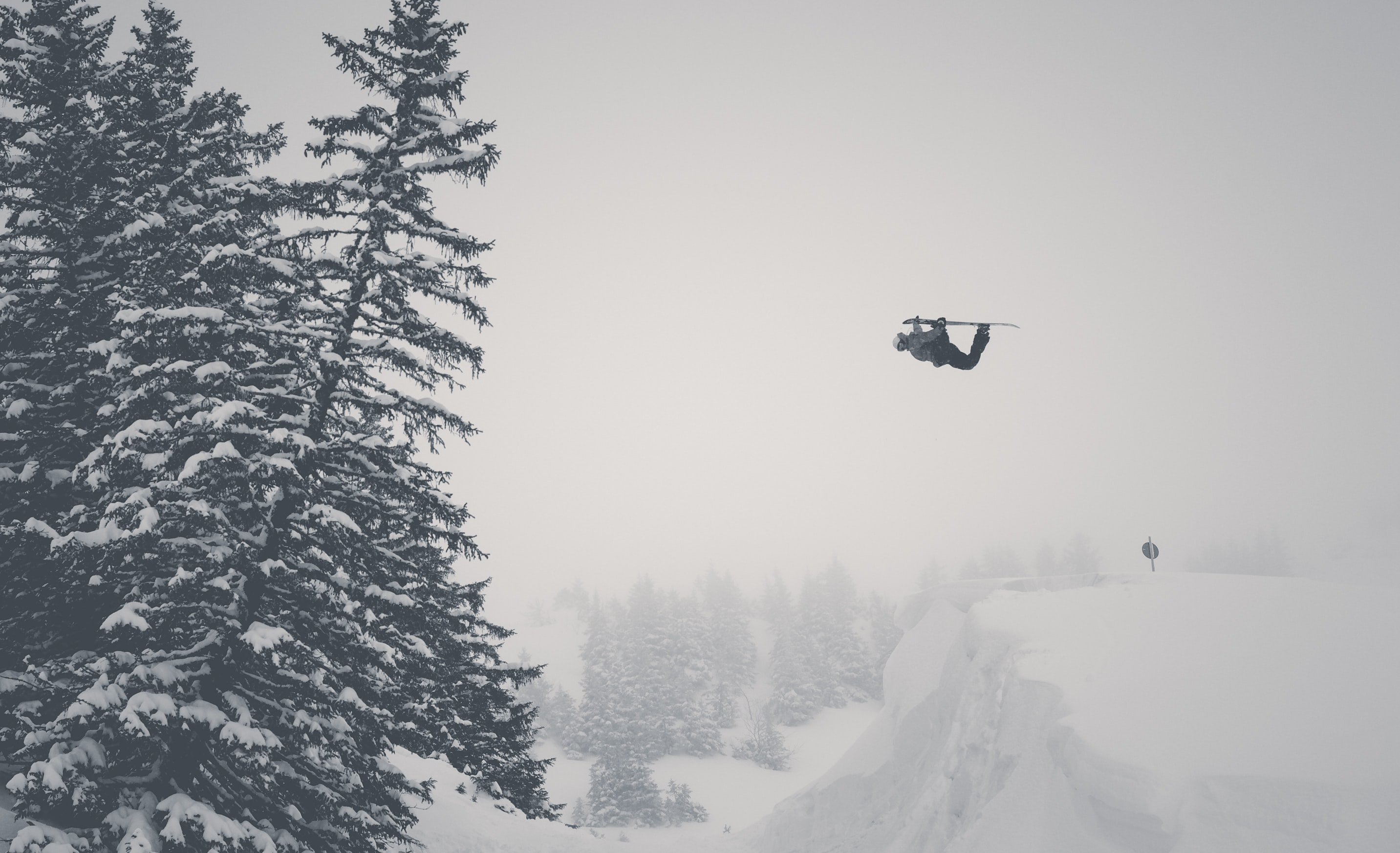 A drone flying in the snow along a tree line in black and white