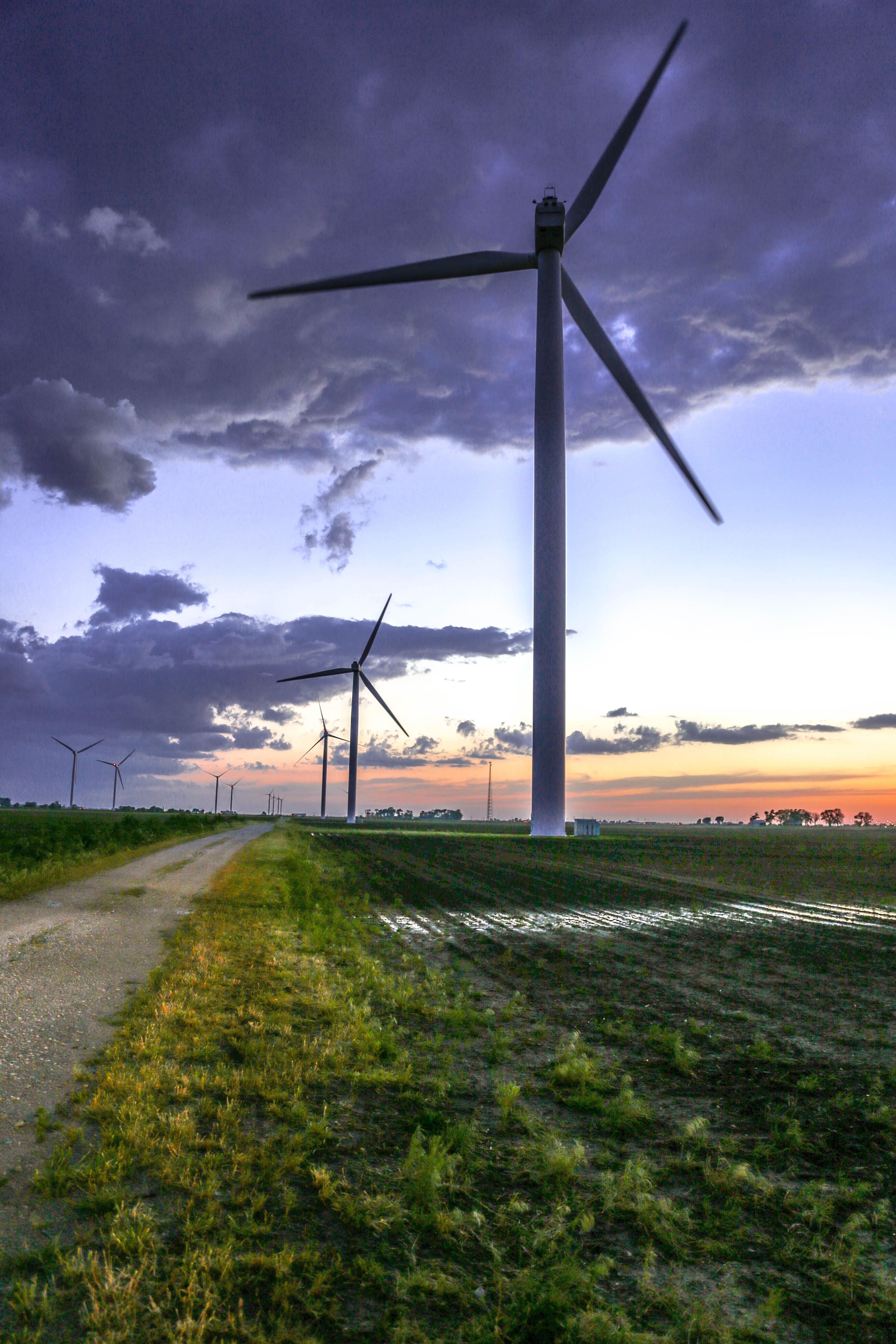 Windmills in farmland.