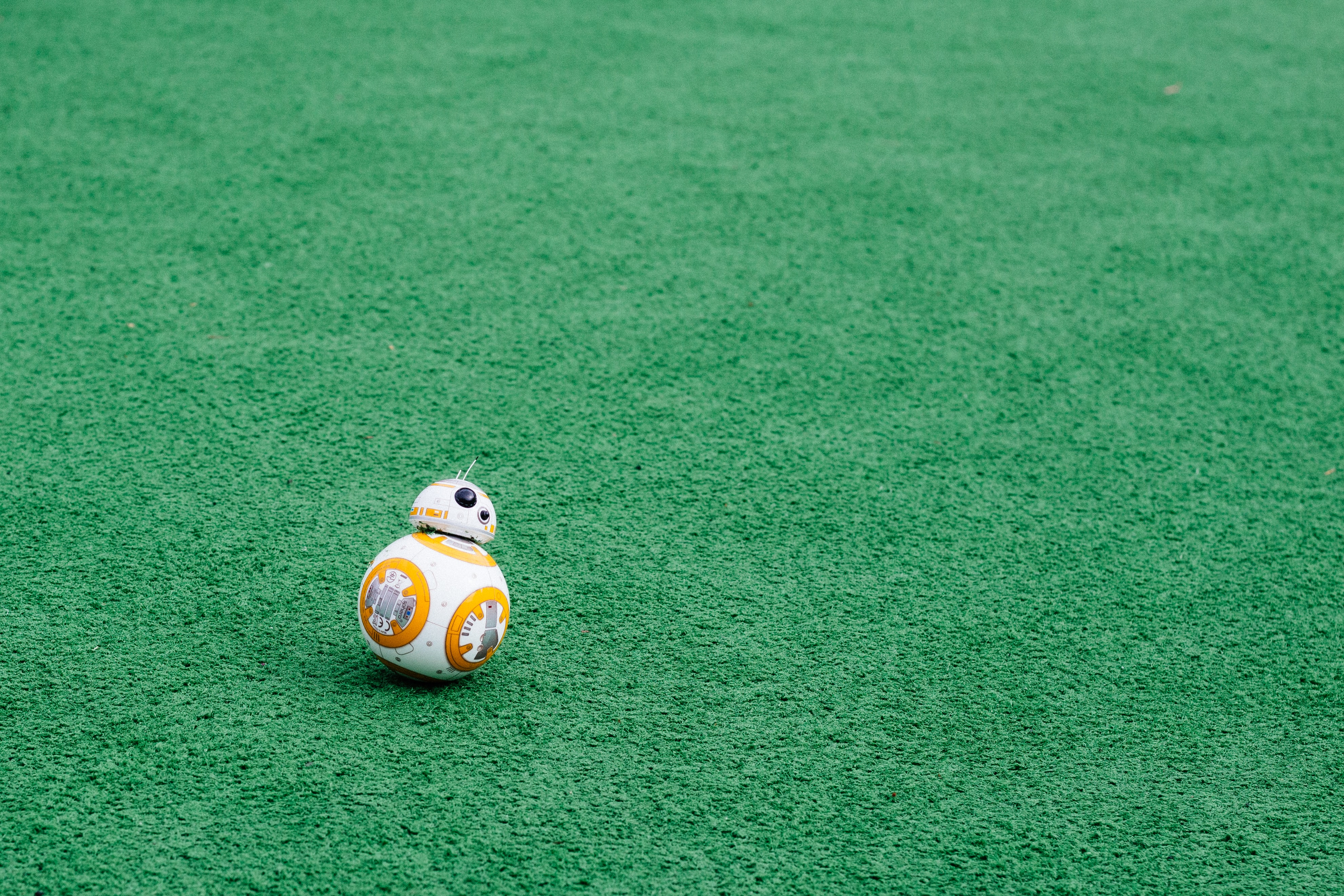 BB-8 on green grass field