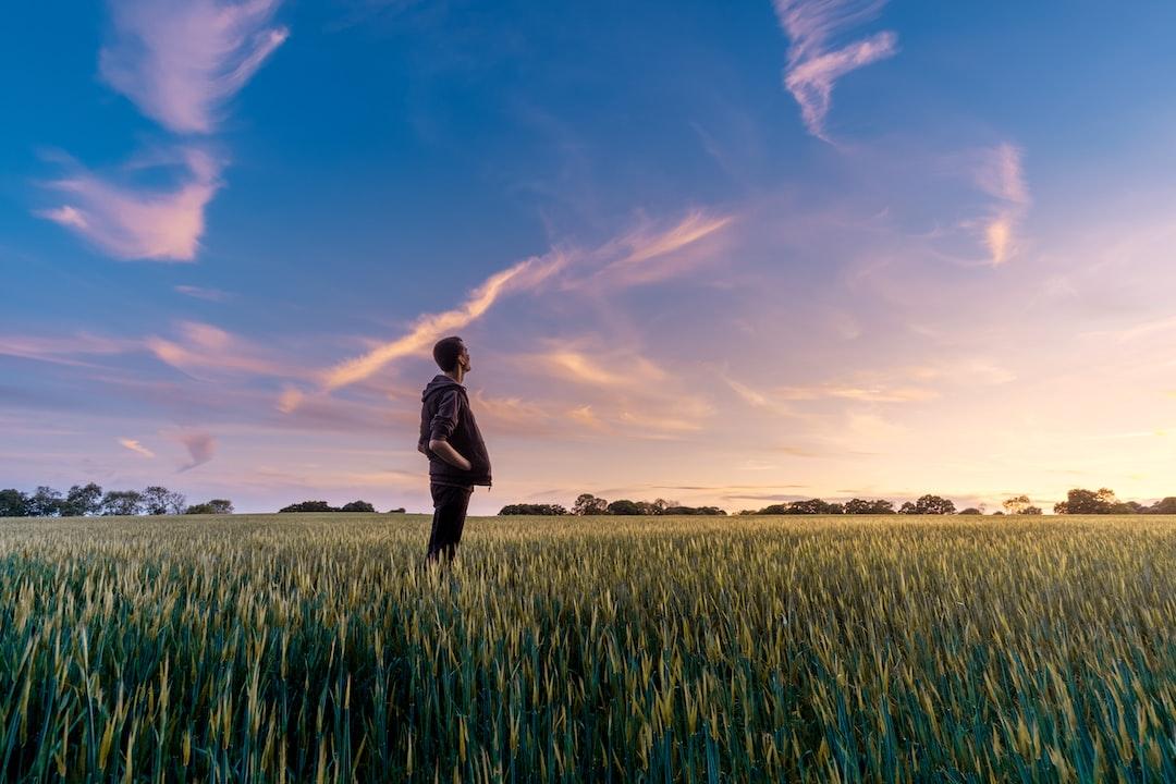 Motivirano rezoniranje – kad nam glavni motiv nije točnost