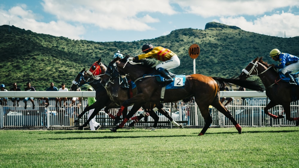 100+ Horse Racing Pictures | Download Free Images on Unsplash