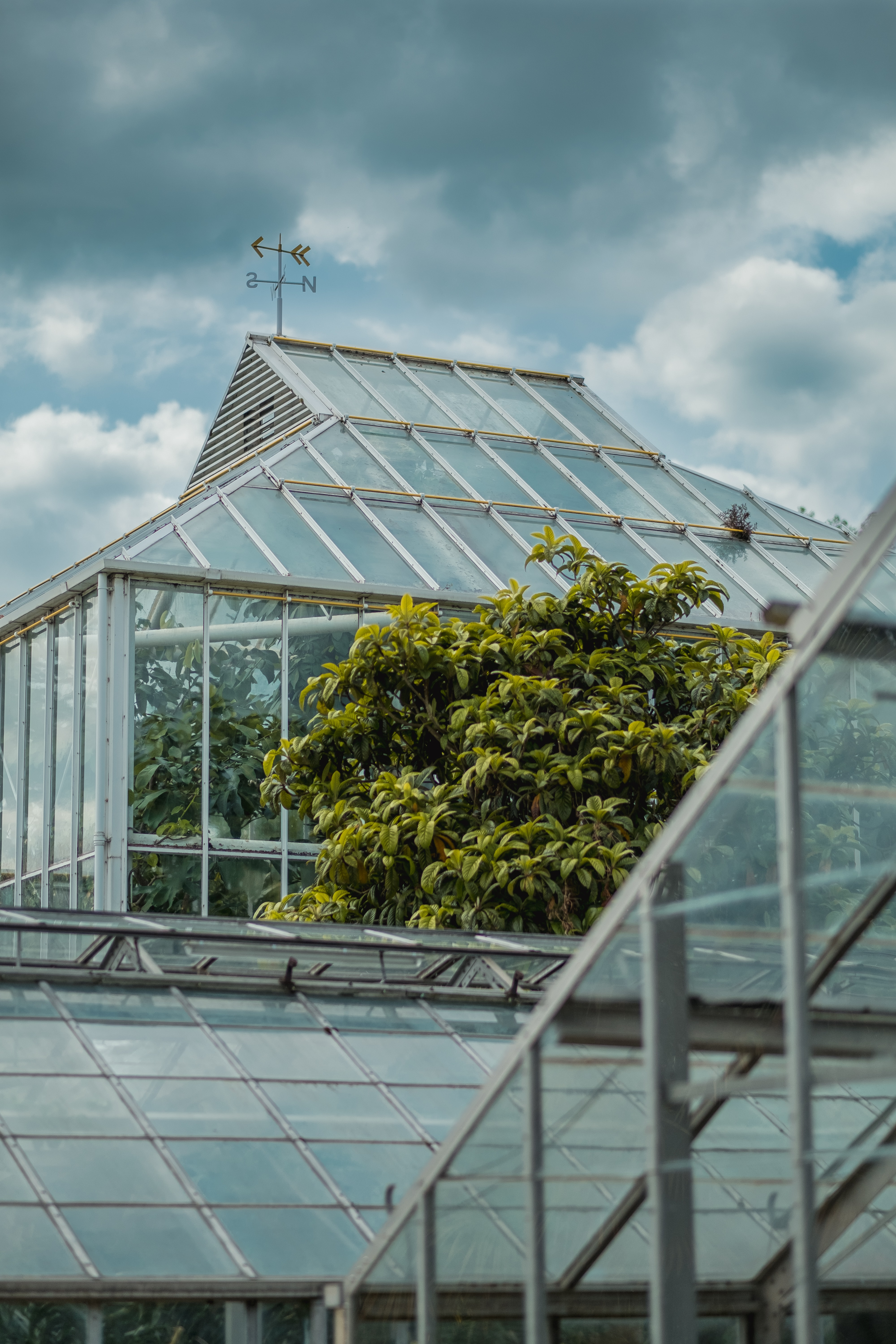 glass greenhouse under cloudy sky