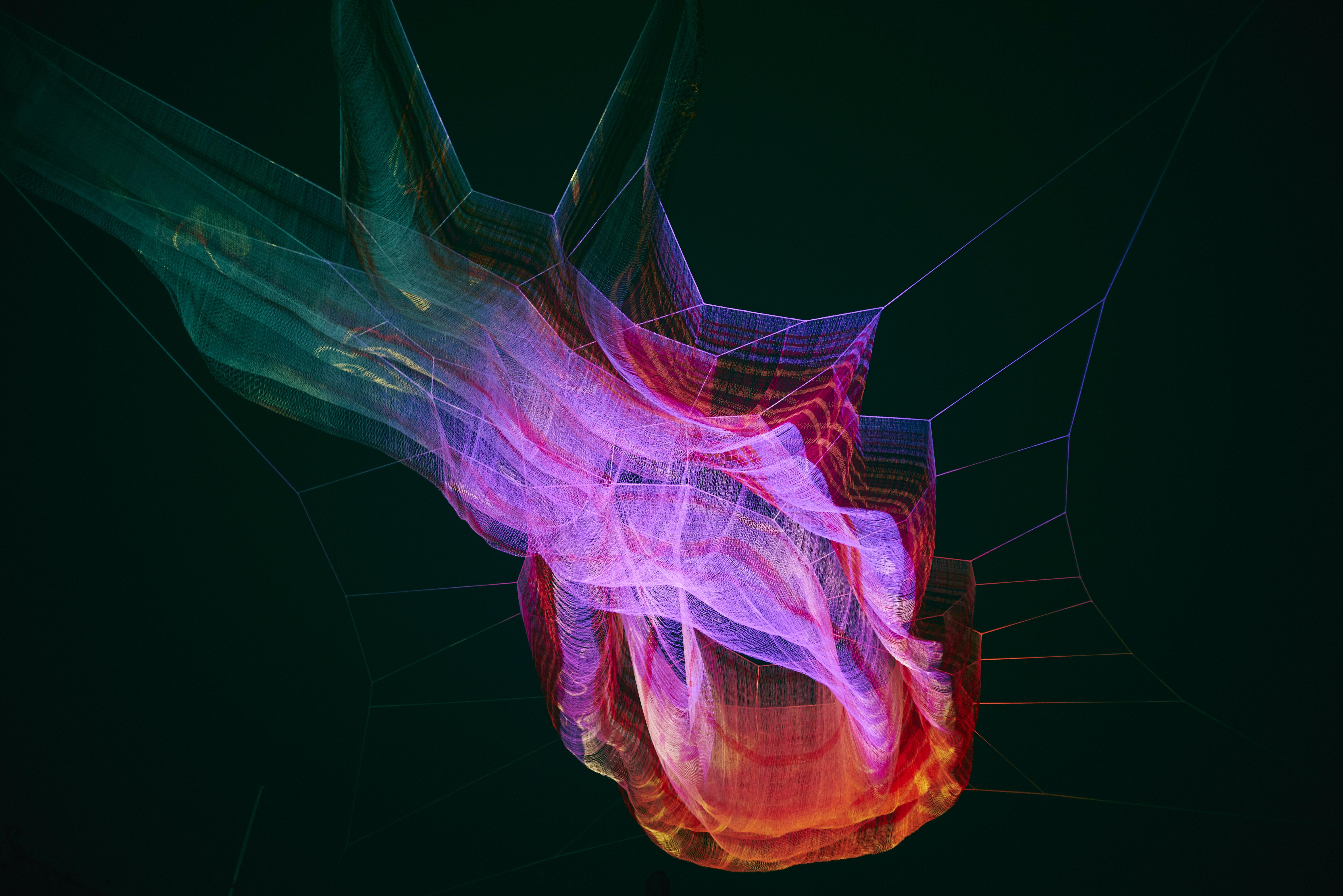closeup photo of abstract illustration