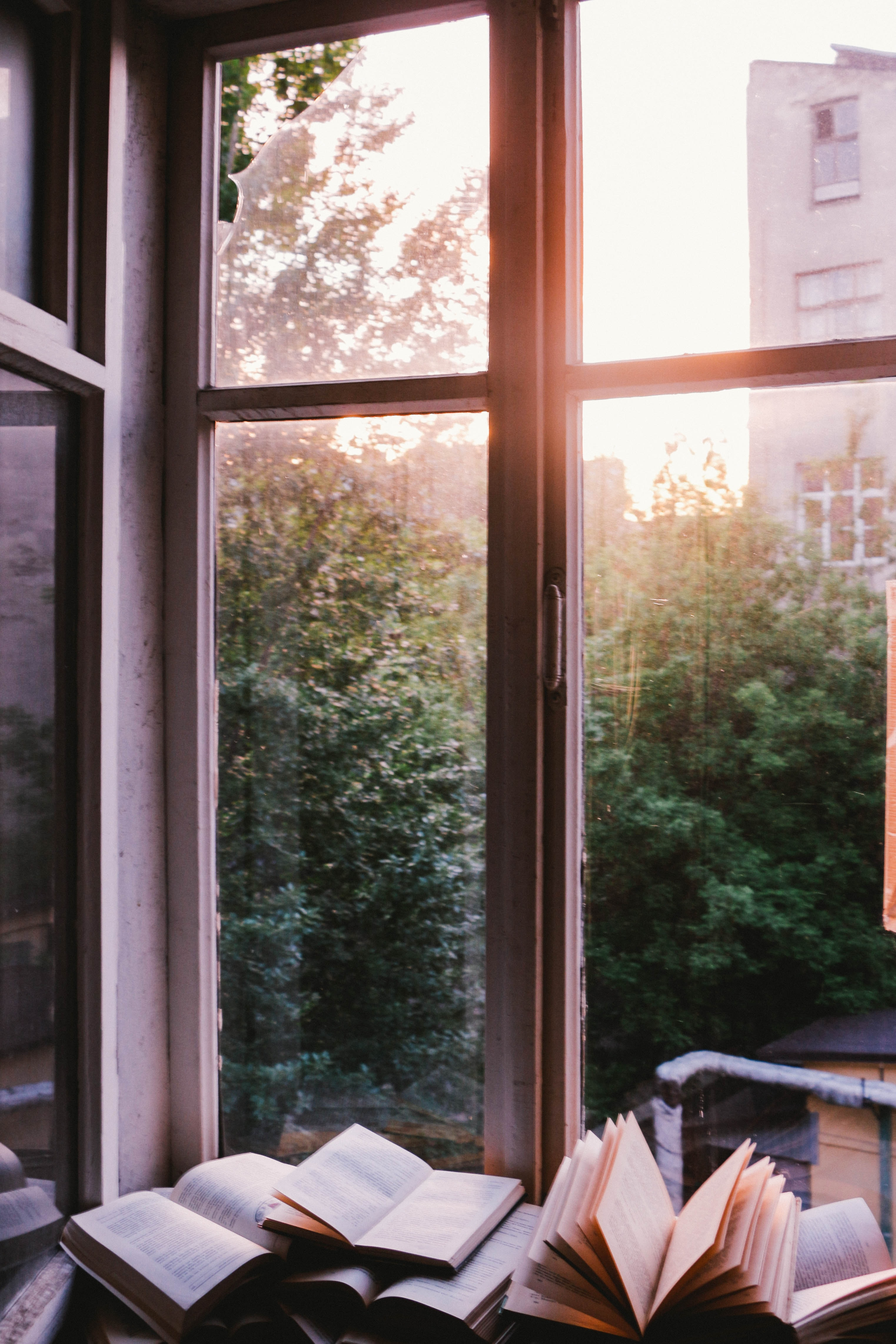 books beside window during sunset