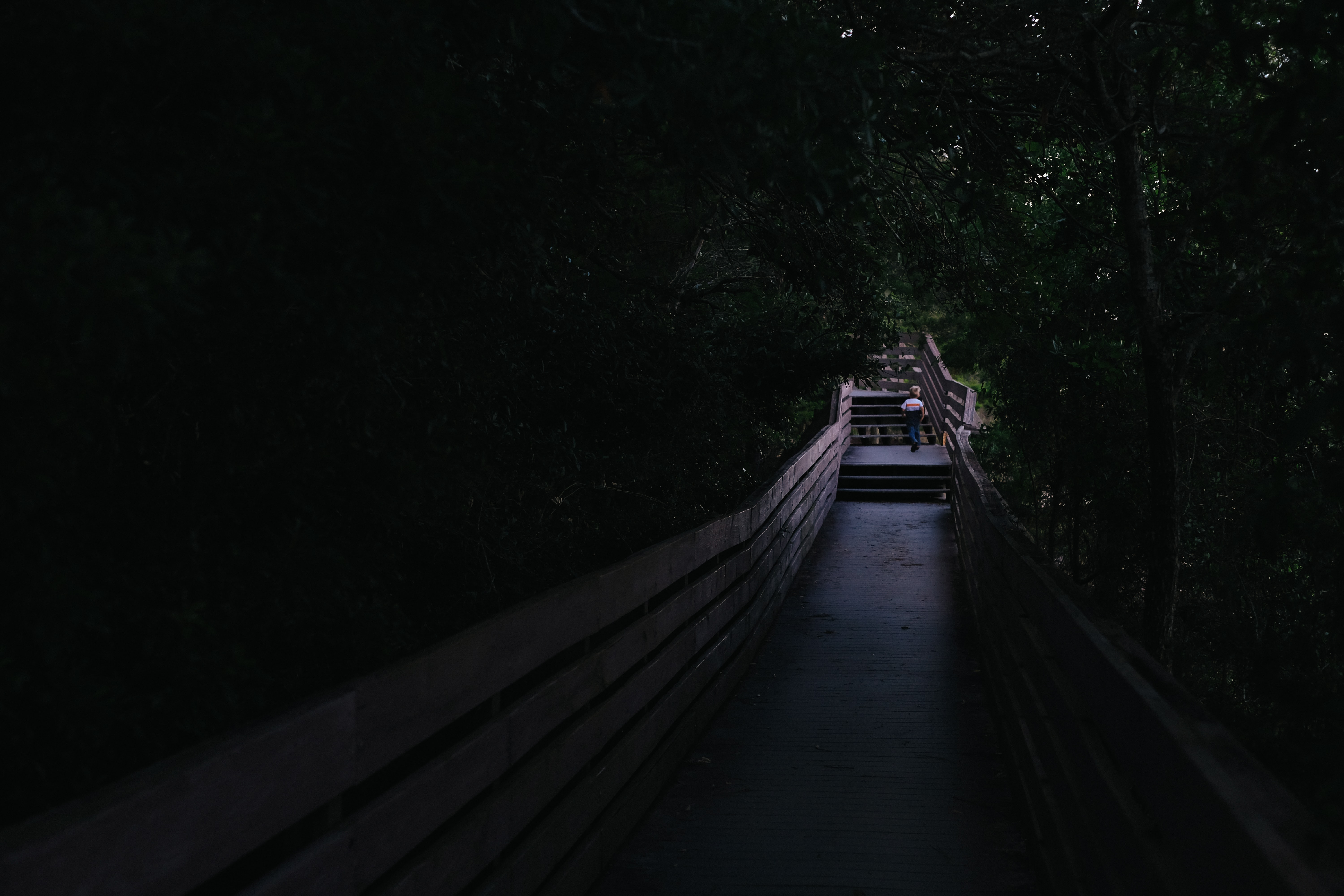 A person walking along a railed pathway at Bay Bluffs Park in the middle of the night