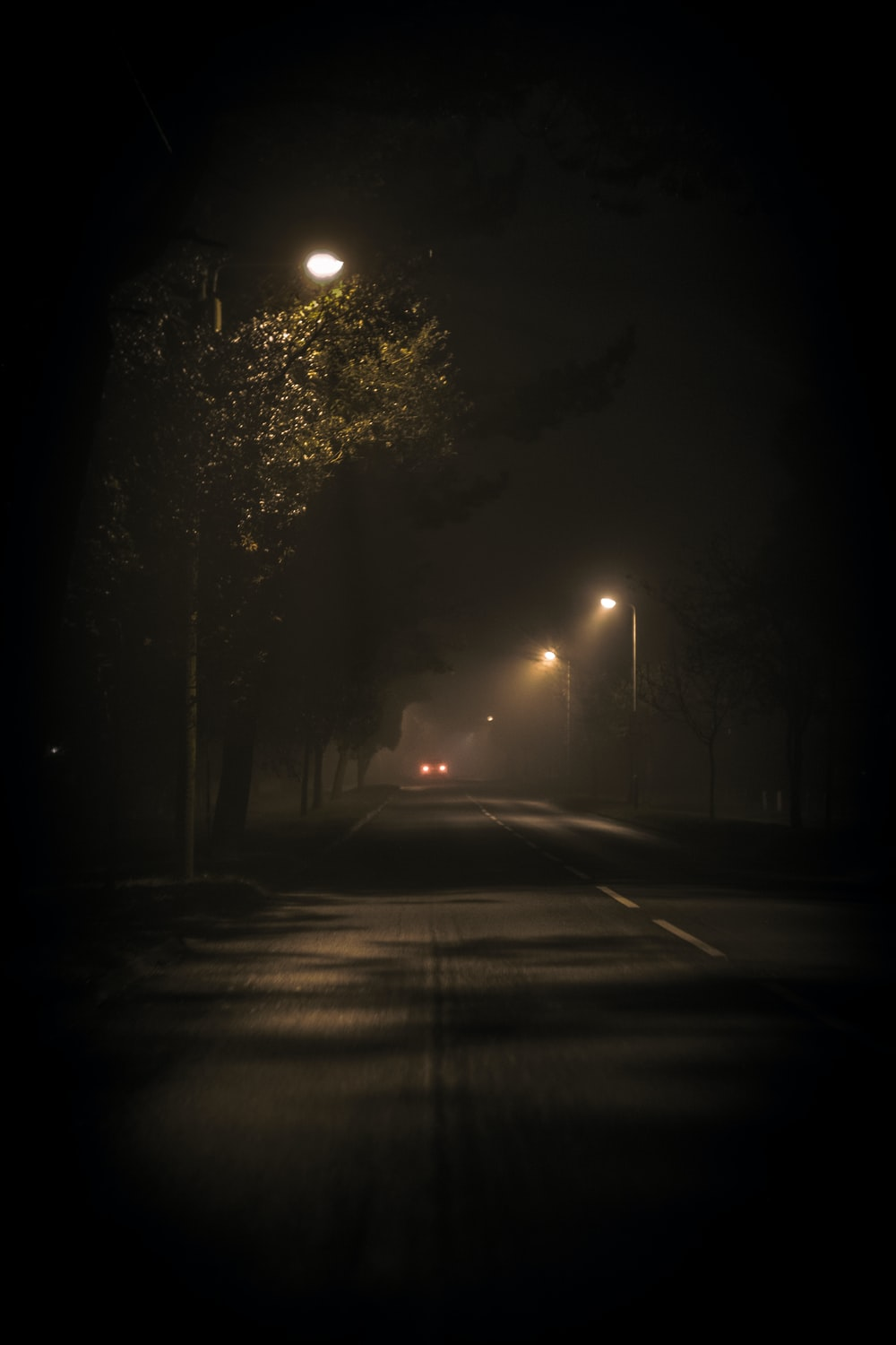 turned-on street lamps