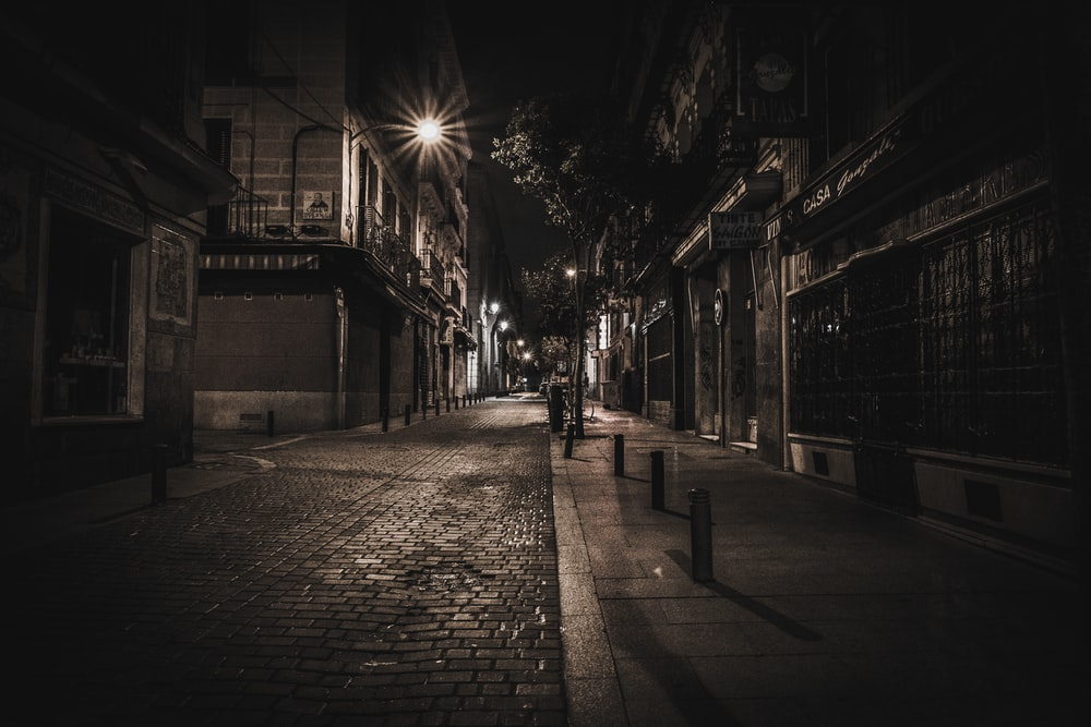 sepia photography of street