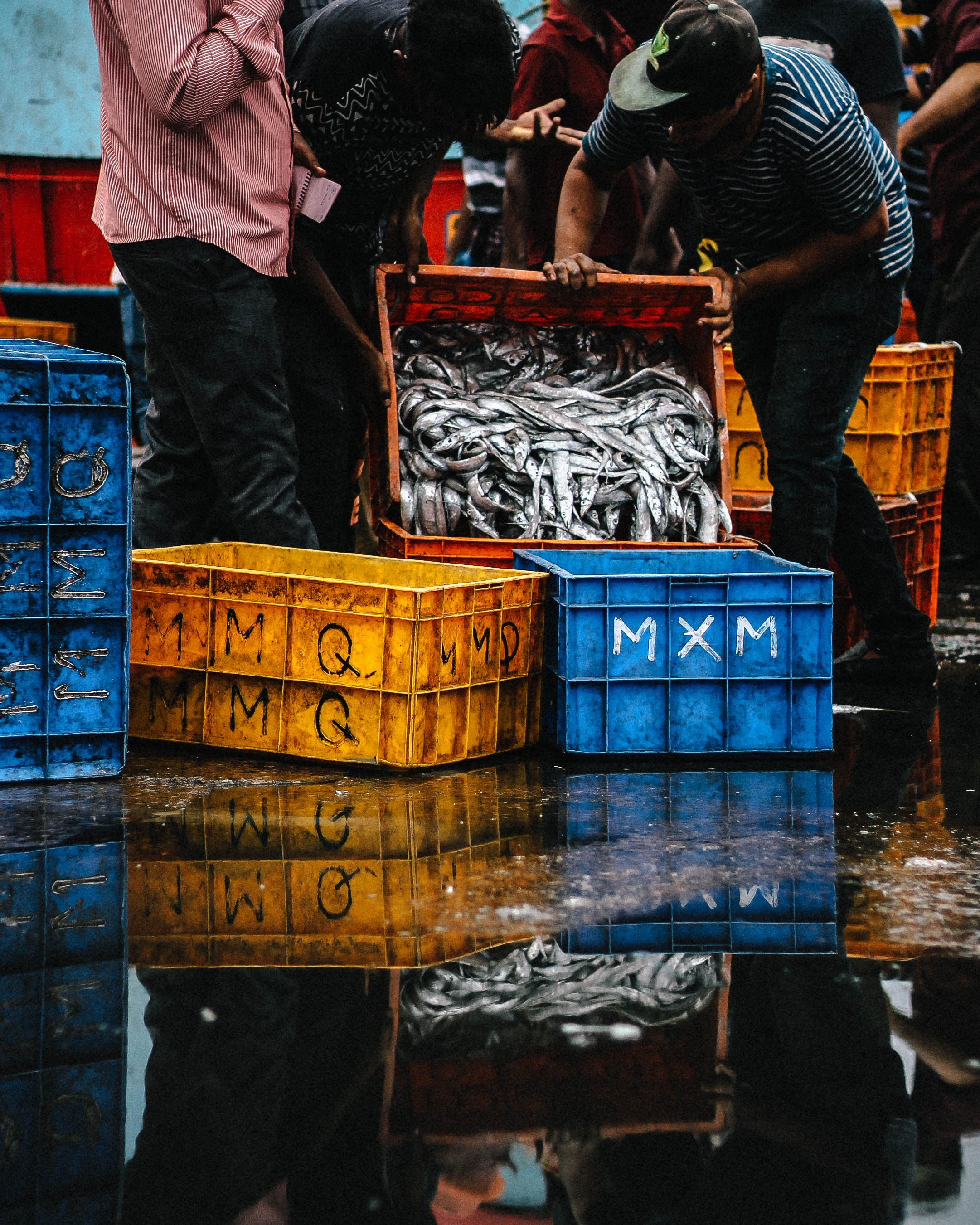 People pouring caught fish into a plastic crate