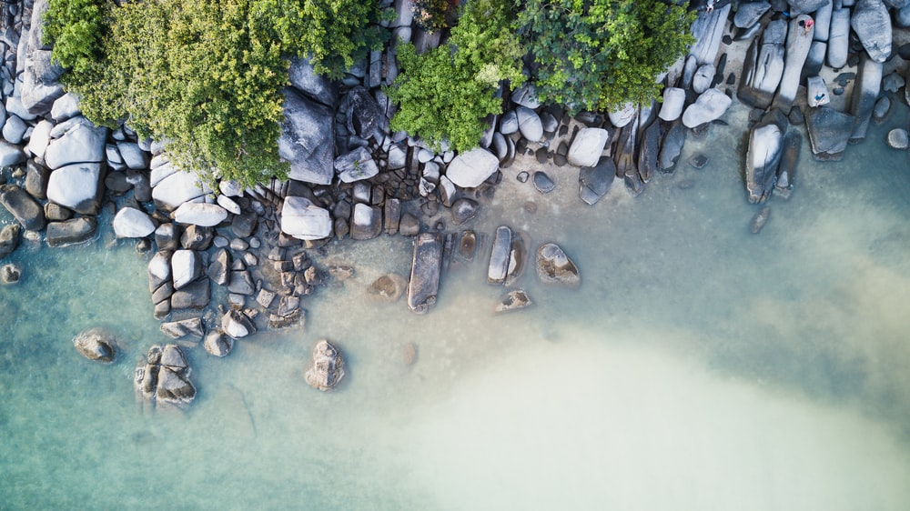top view of rocky seashore during daytime