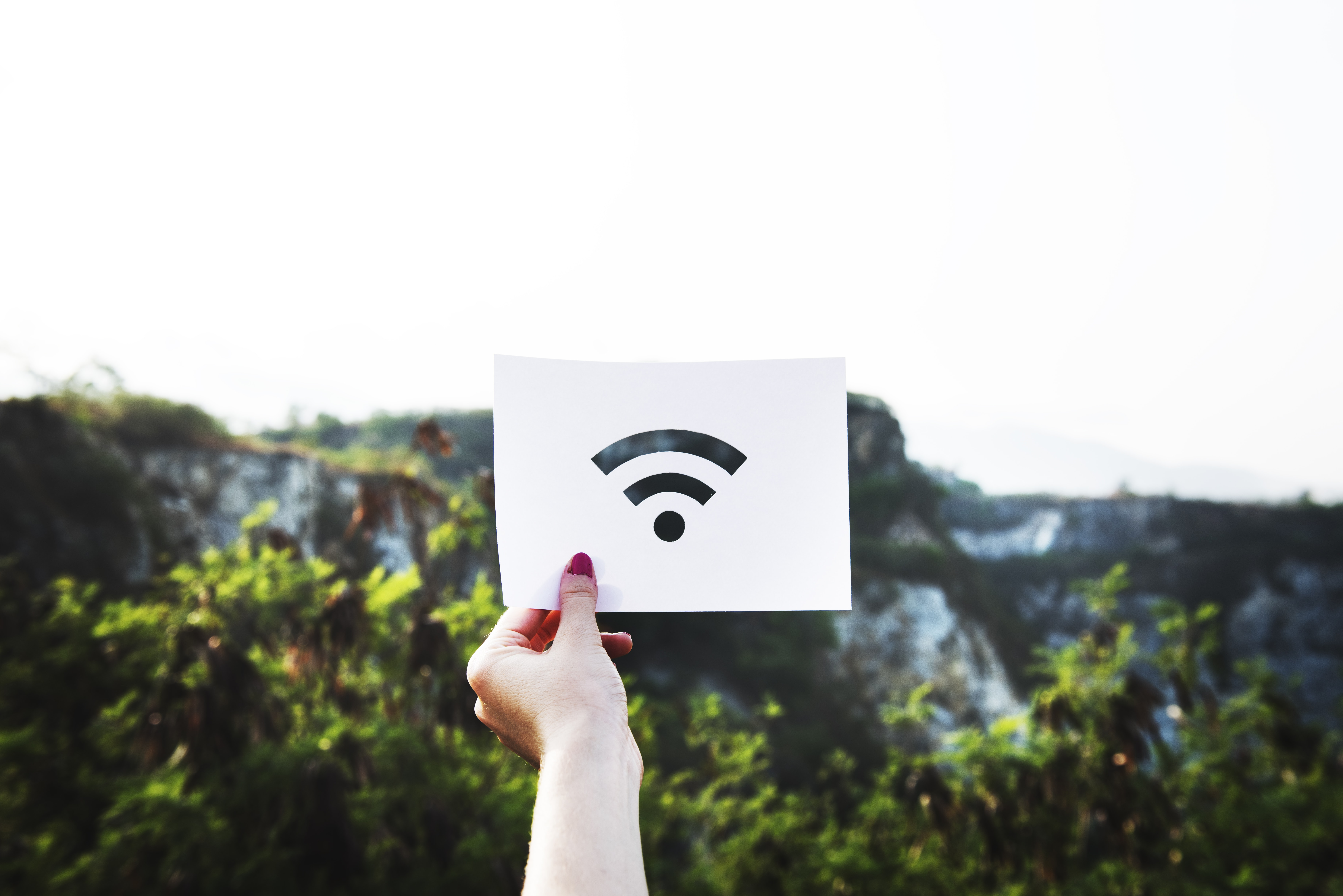 person holding wifi logo paper