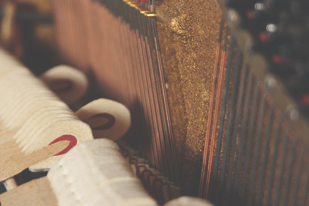 close up photo musical string