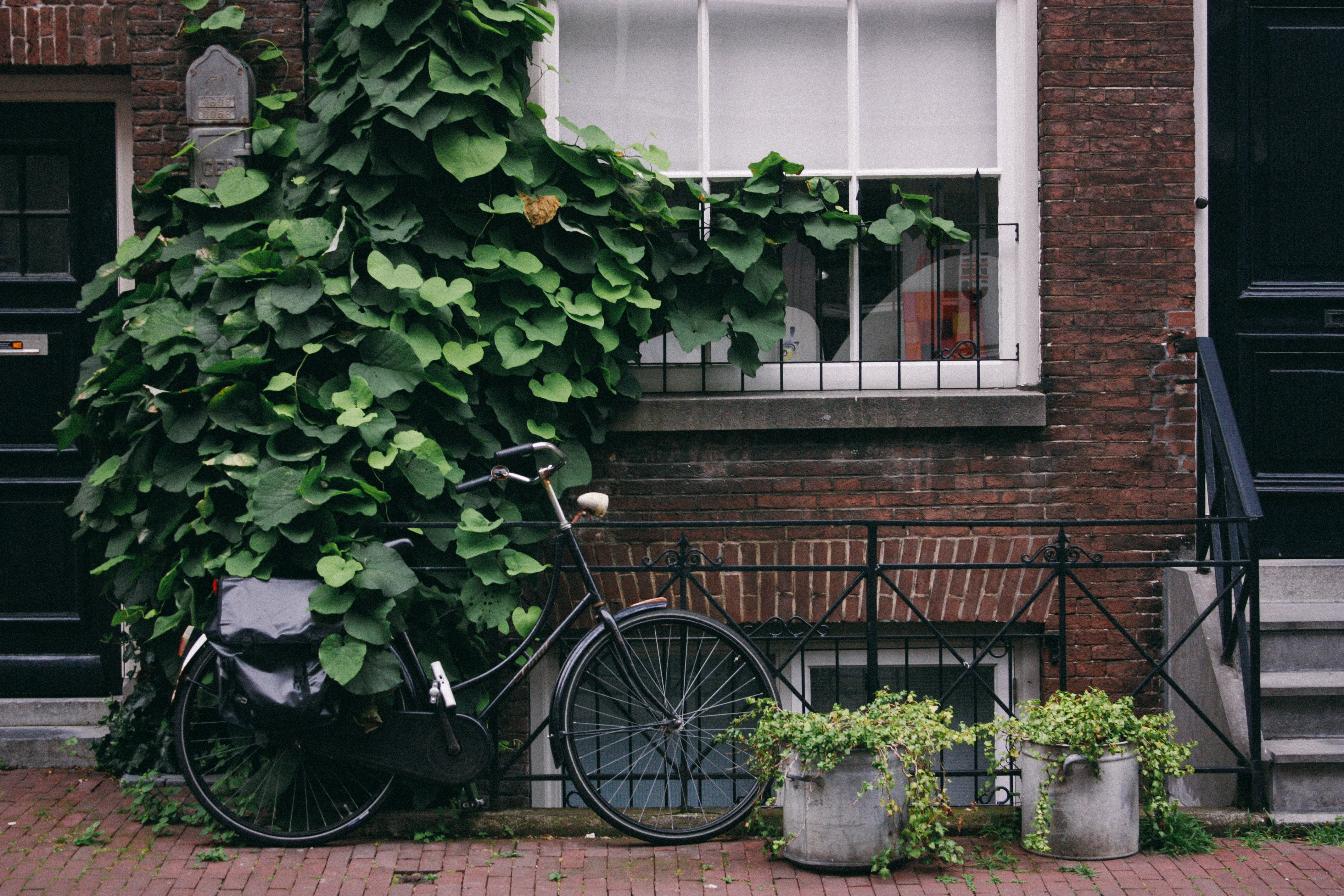Bike covered in green leaves sits in front of brick building and window beside two plants