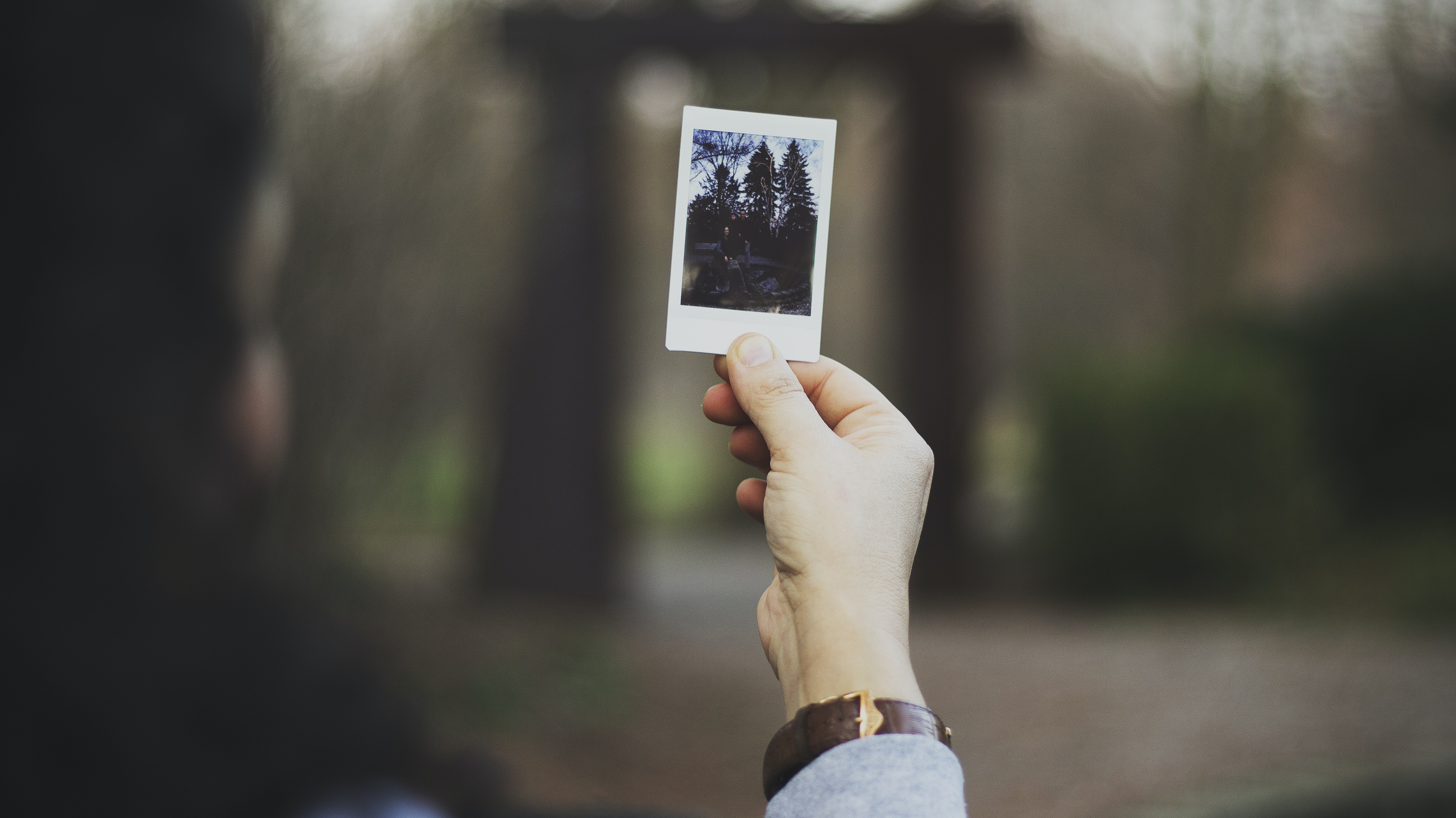 A person wearing a watch, holding a Polaroid picture of a forest in their hand
