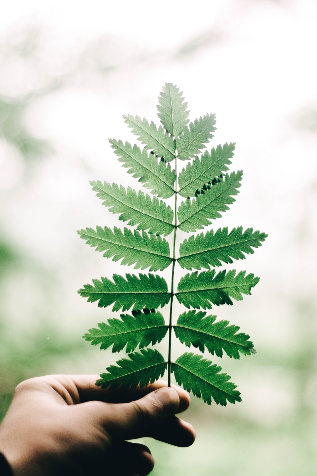 WHAT ARE THE FUNDING OPTIONS FOR MY ENVIRONMENTALLY FRIENDLY BUSINESS?