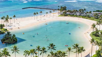 aerial photo people in beach at daytime hawaii zoom background