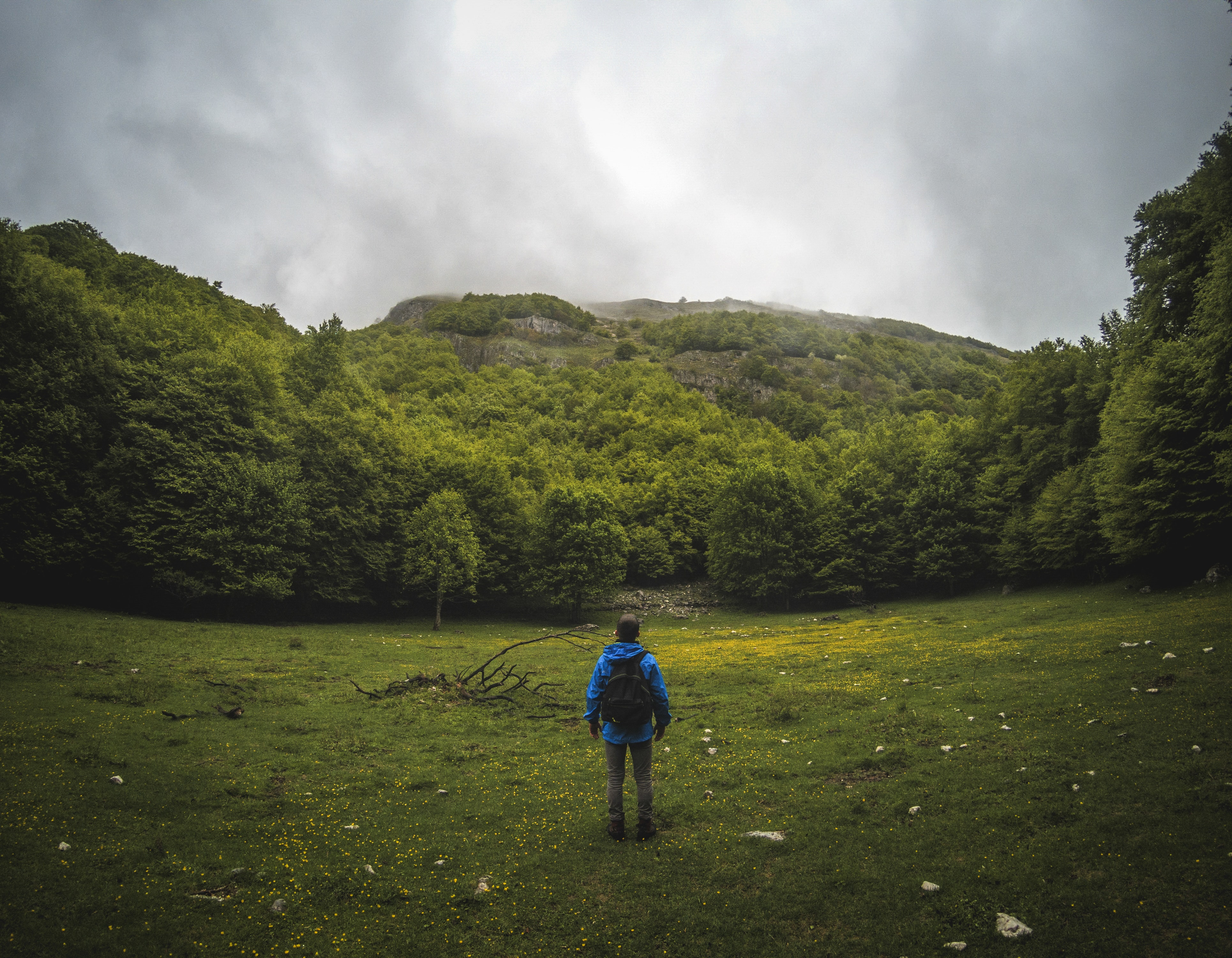 A male backpacker standing in the middle of a green glade and looking at the forest on a steep slope
