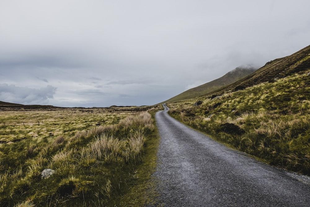 asphalt road between grass fields