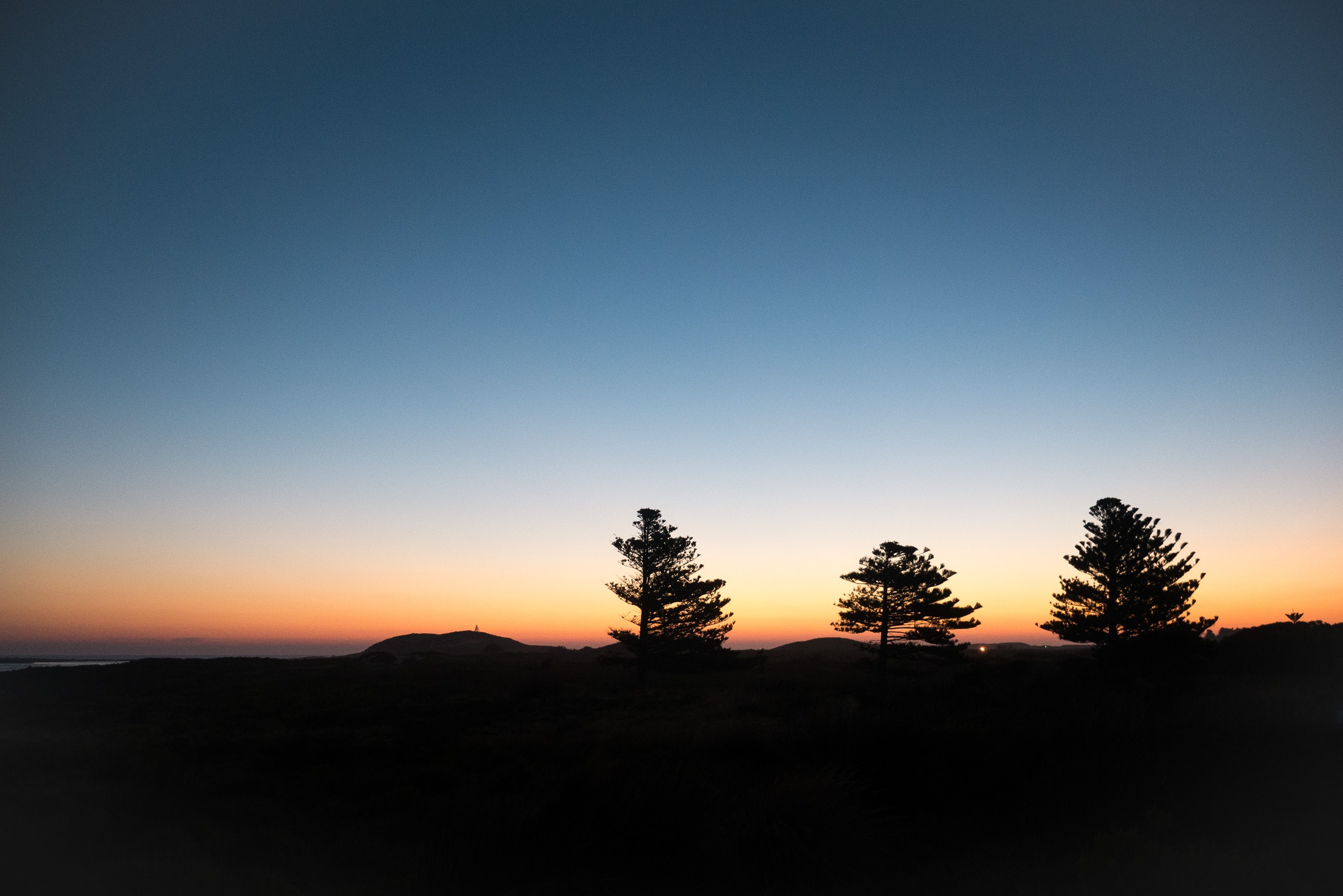 A silhouette of three trees, as the sun sets in the distance over Griffitts Island