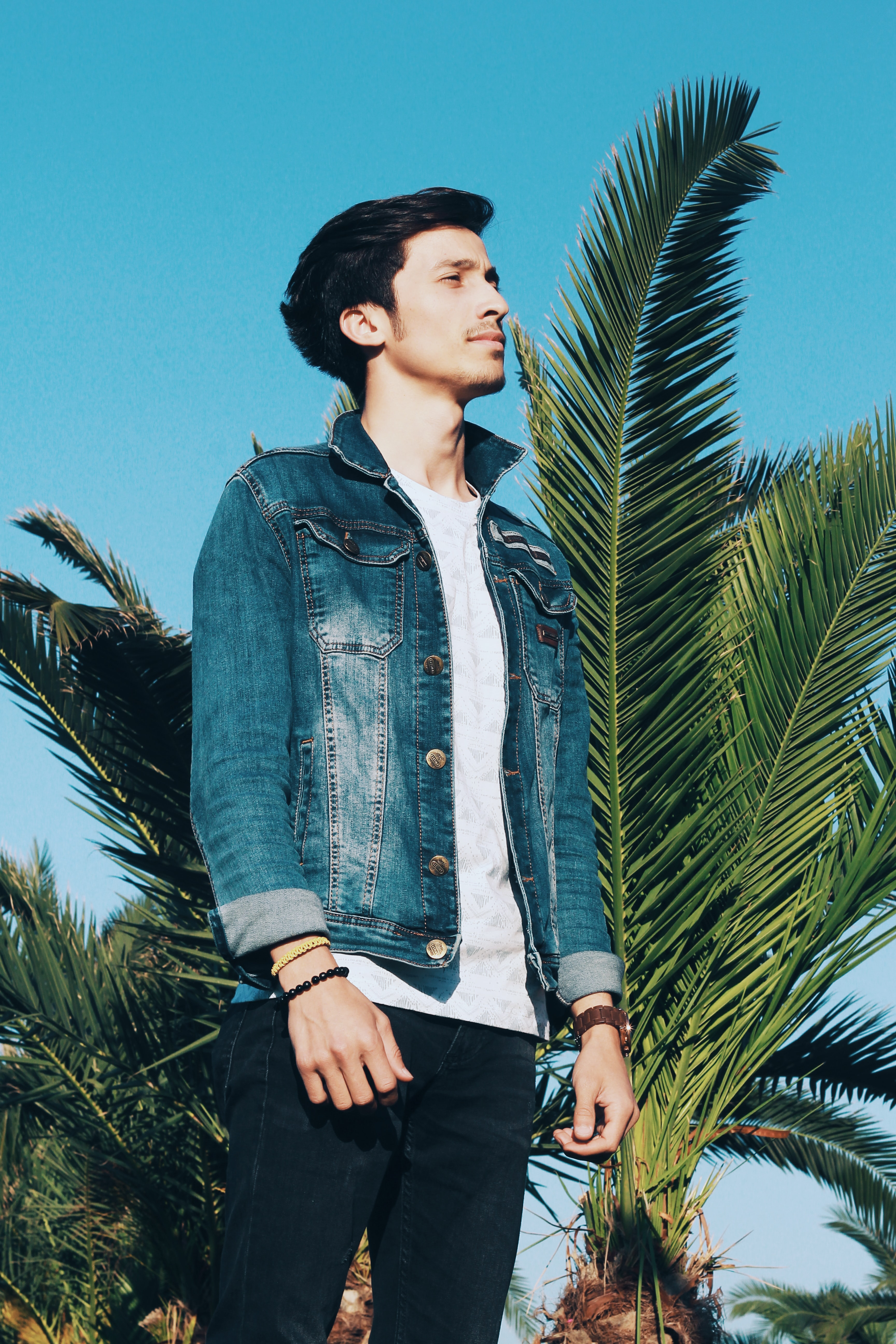 A smiling man in a jean jacket in front of a palm tree and blue sky
