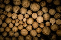 brown chopped logs