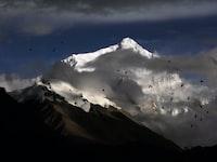 photo of birds flying near snow mountain