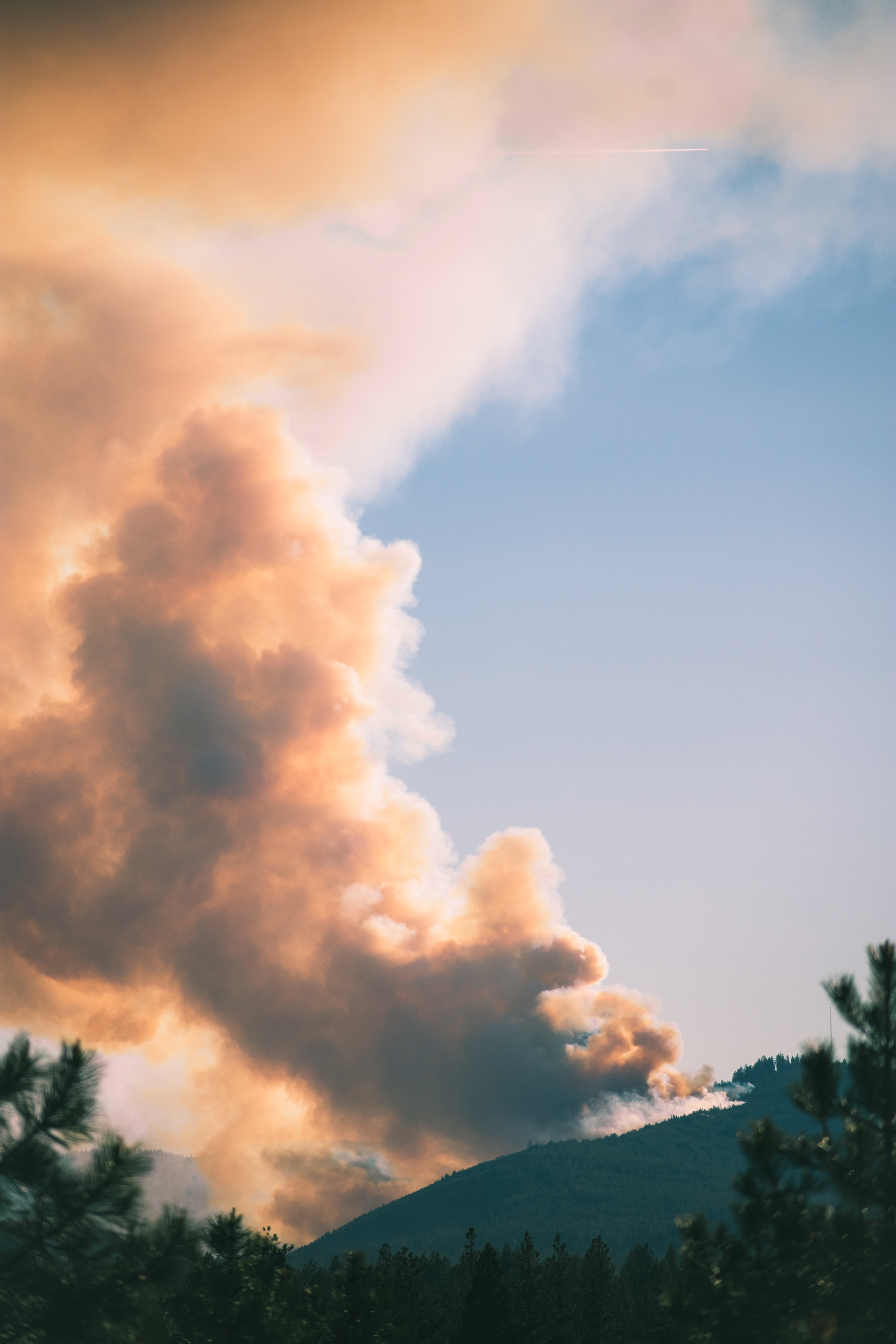 A heavy cloud of smoke rising up from a burning forest in the distance