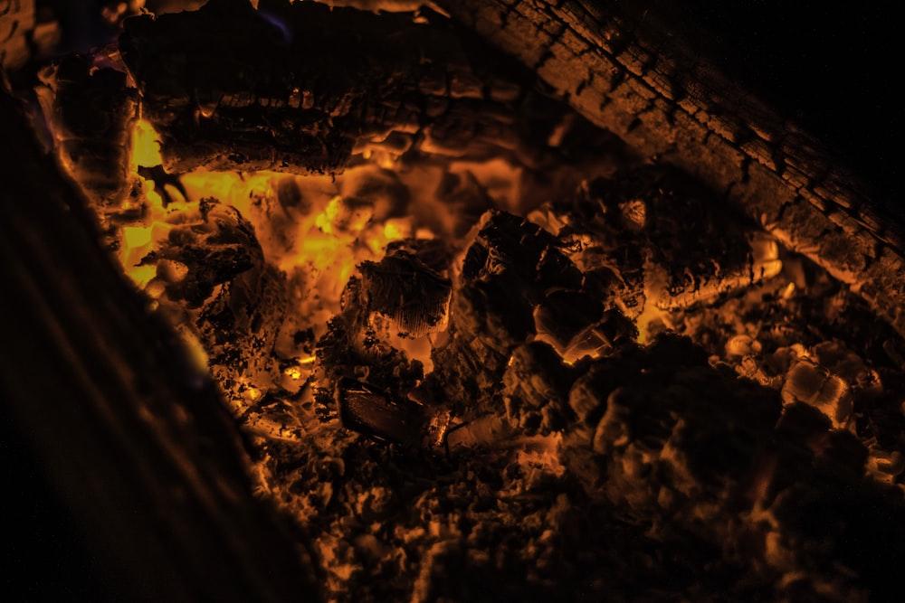 closeup photo of burning coal