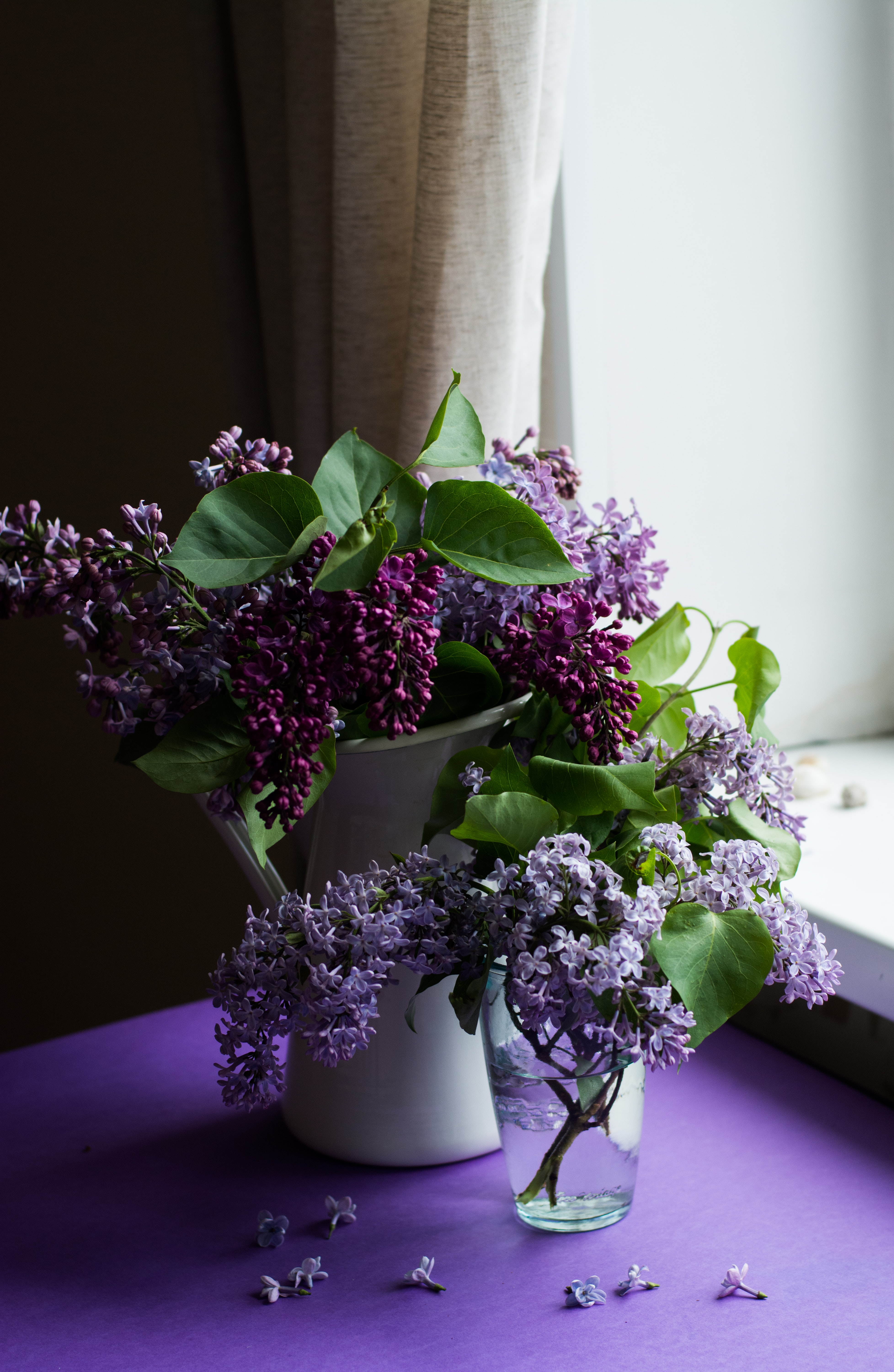 Two vases full of lilac flowers on a table near a windowsill