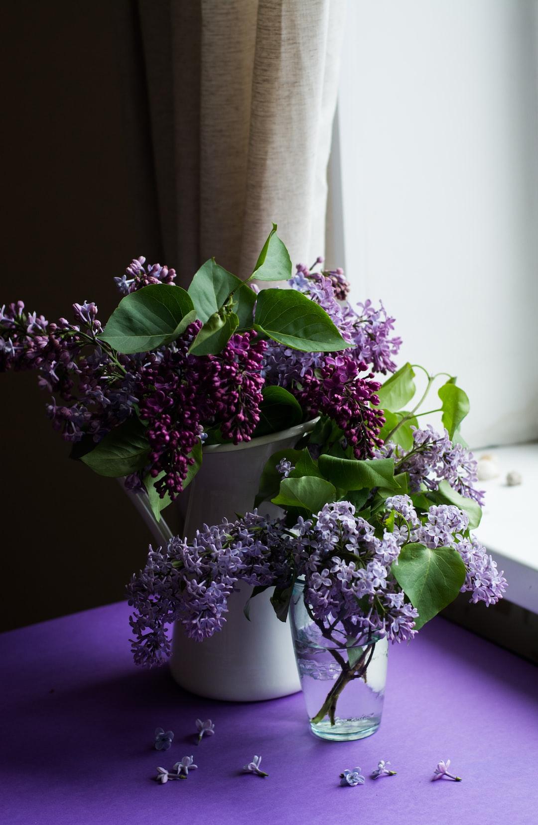 Fragrant lilac by a windowsill