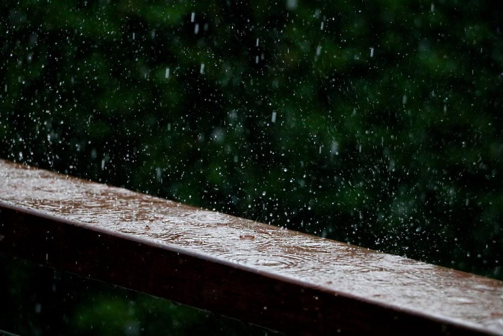Tough wood resisting water damage