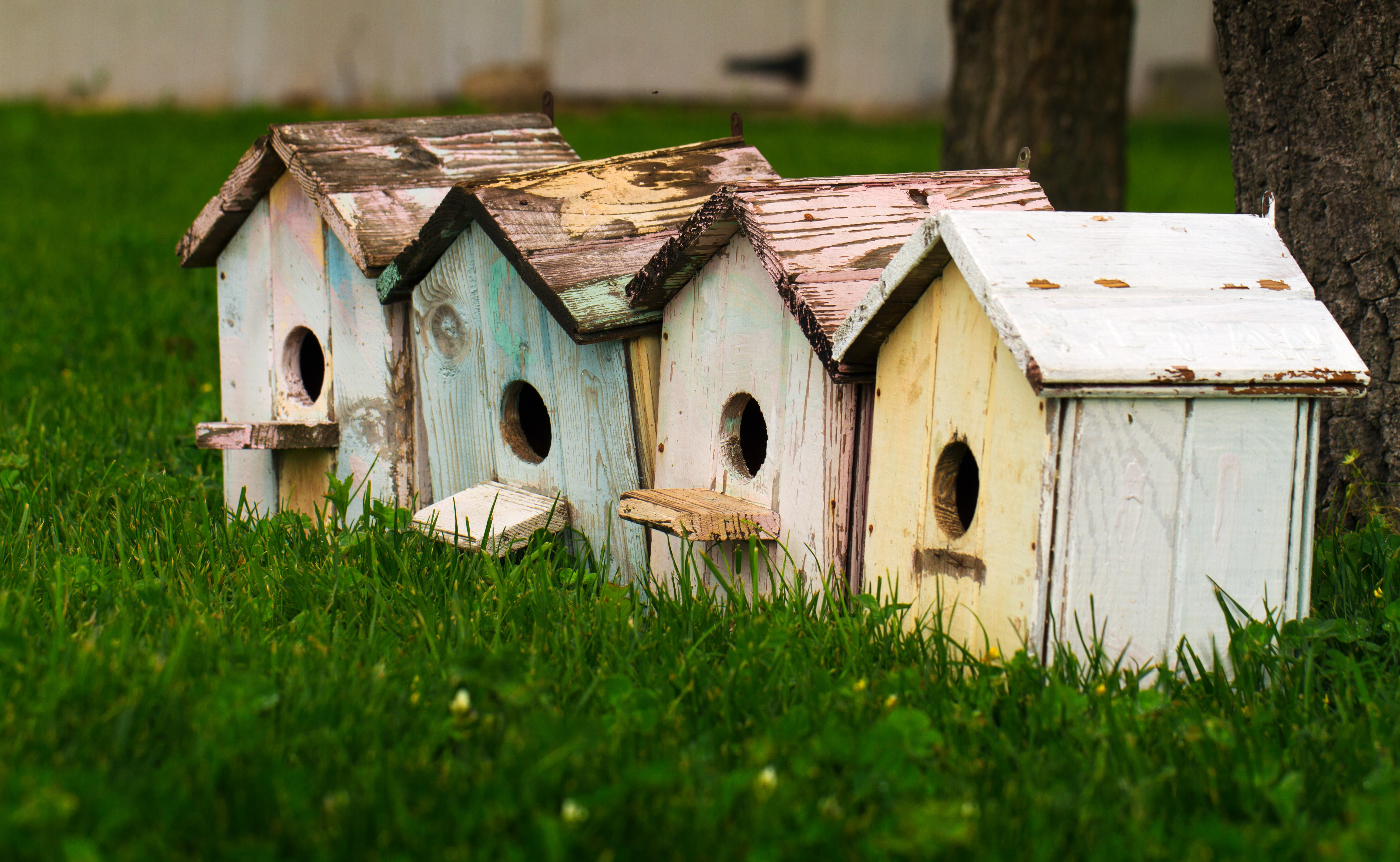 Row of rustic vintage birdhouses in the grass