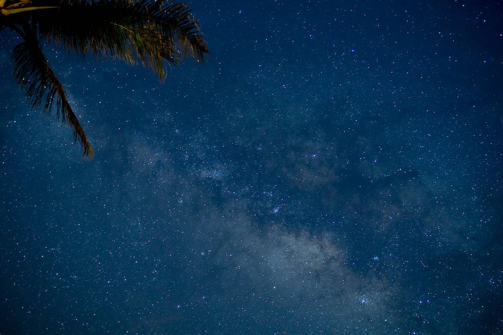 photo of sky full of stars