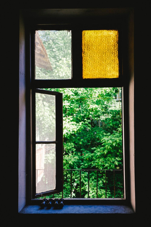 green leafed trees outside window