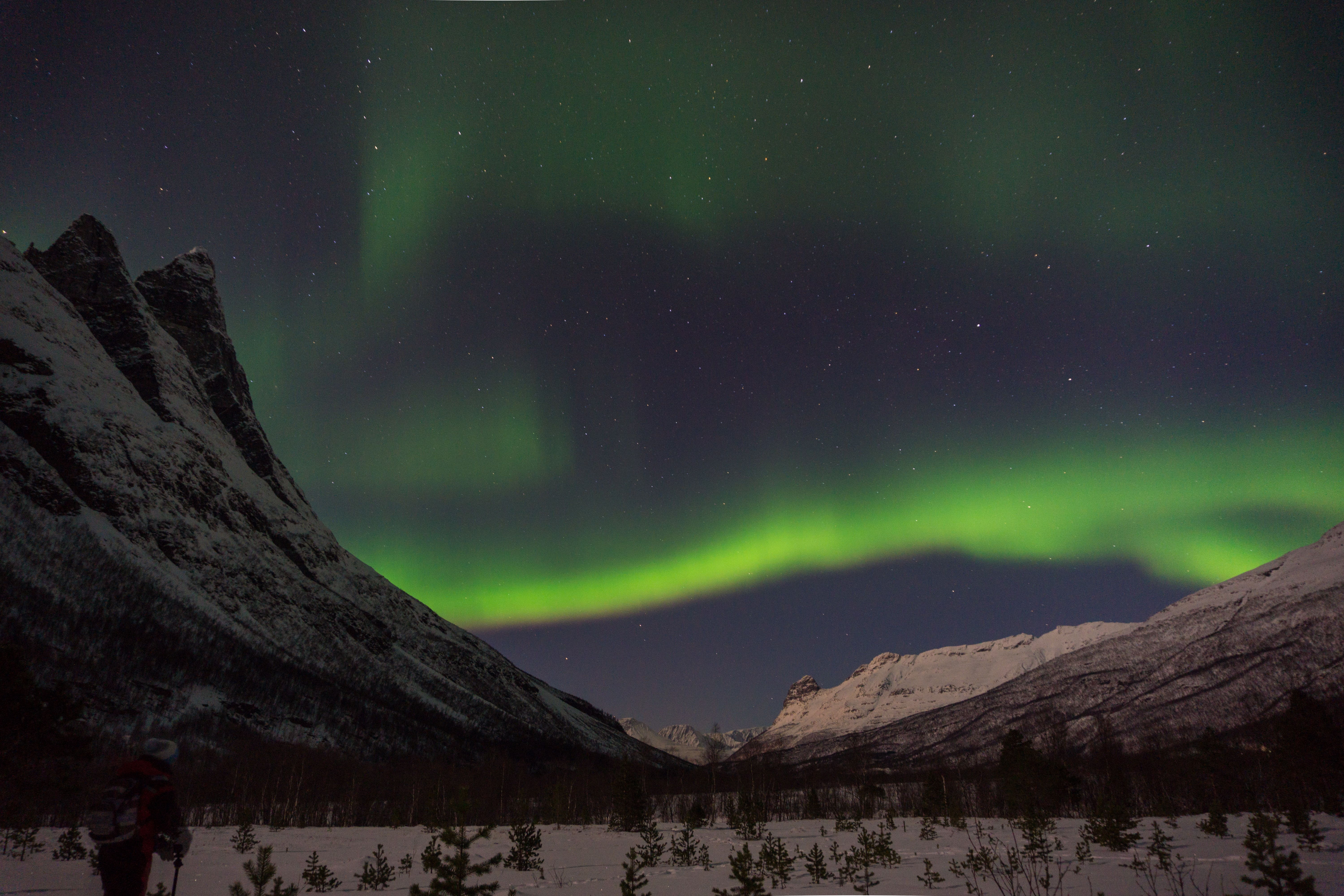 green aurora lights above snow-capped mountain