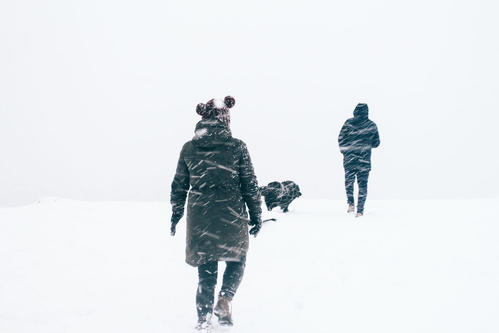 photo of two person wearing black jacket walking on snowy weather