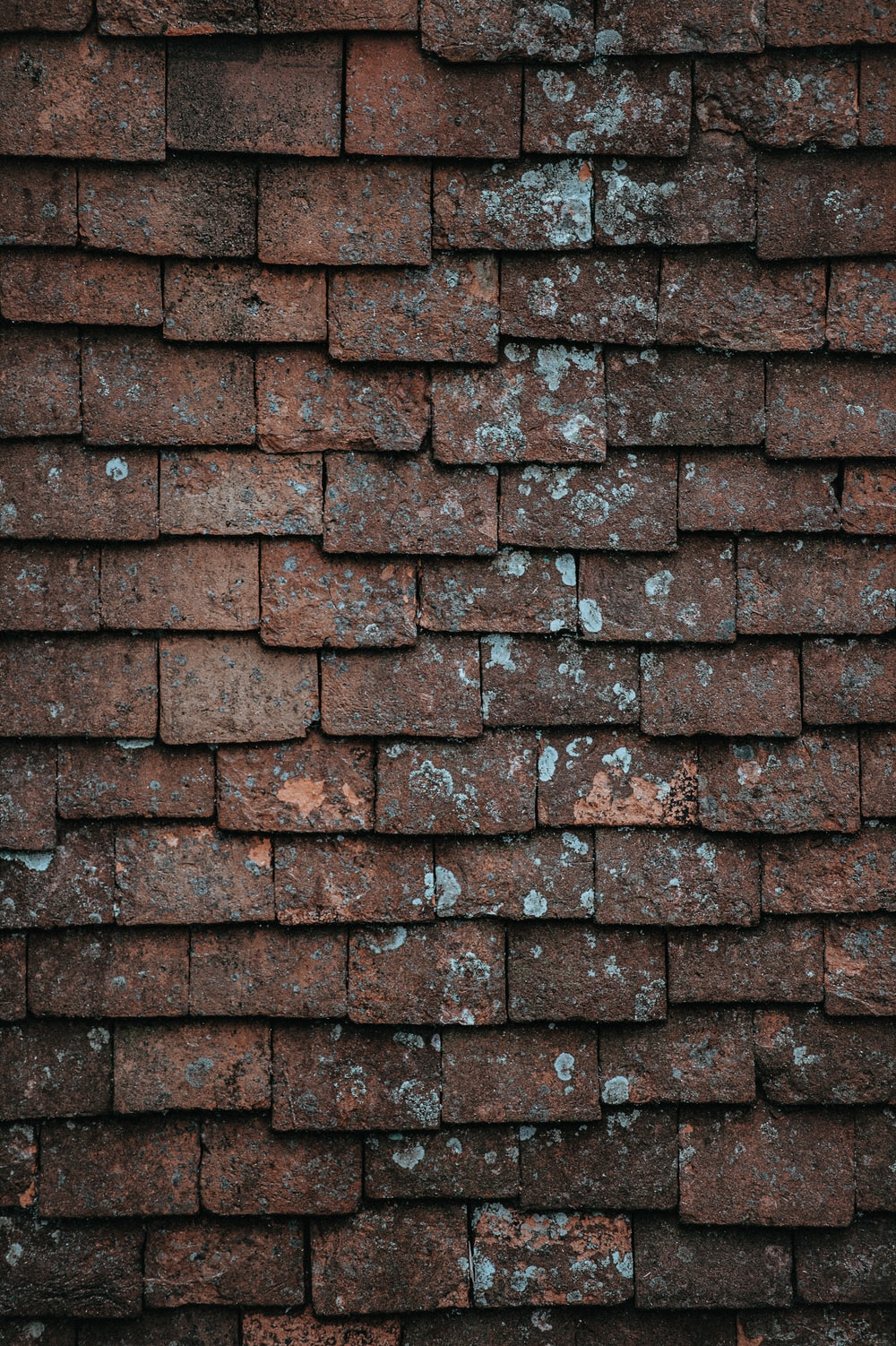 closeup photography of brown and gray concrete bricks