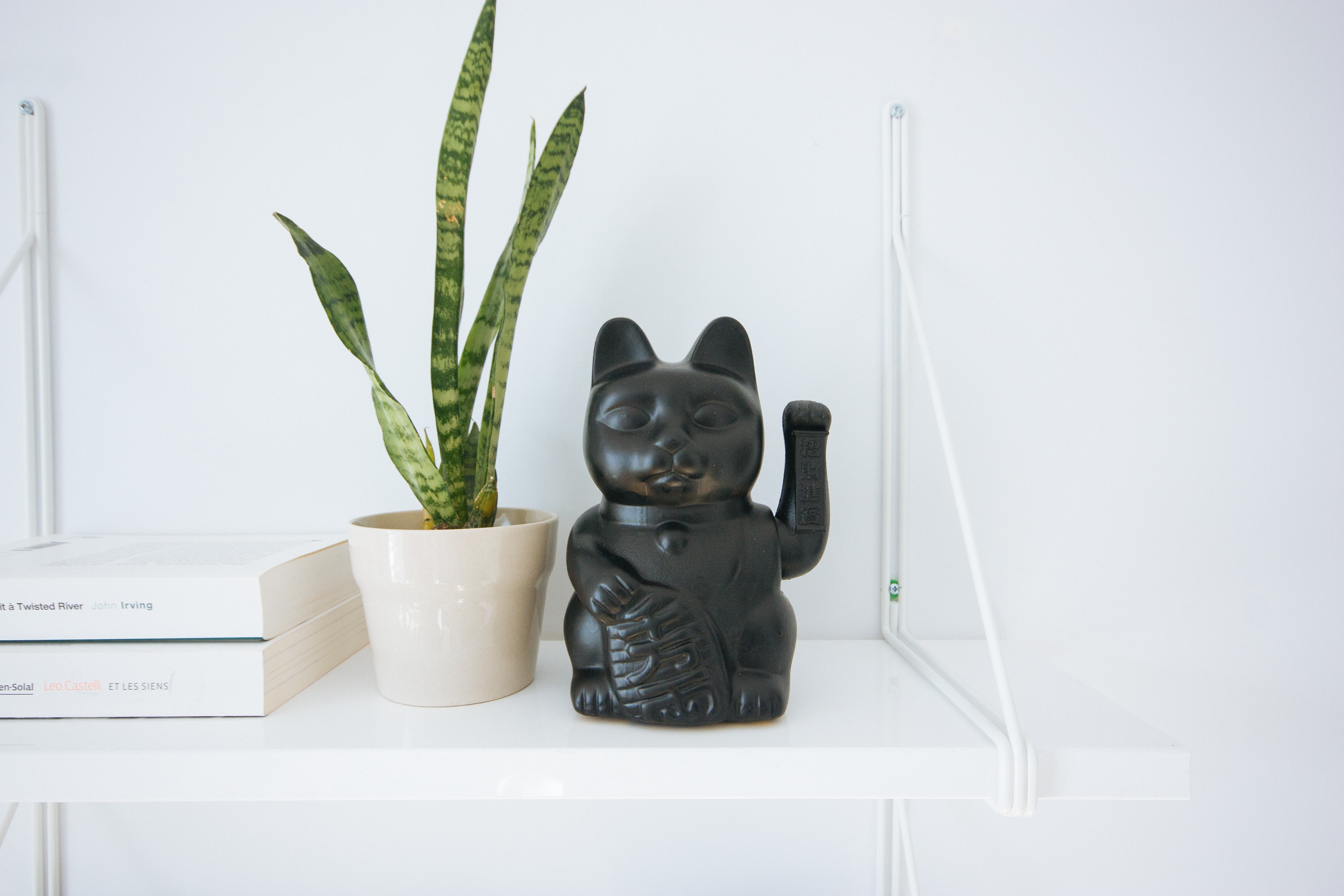 black manekineko cat near white potted green leaf plant