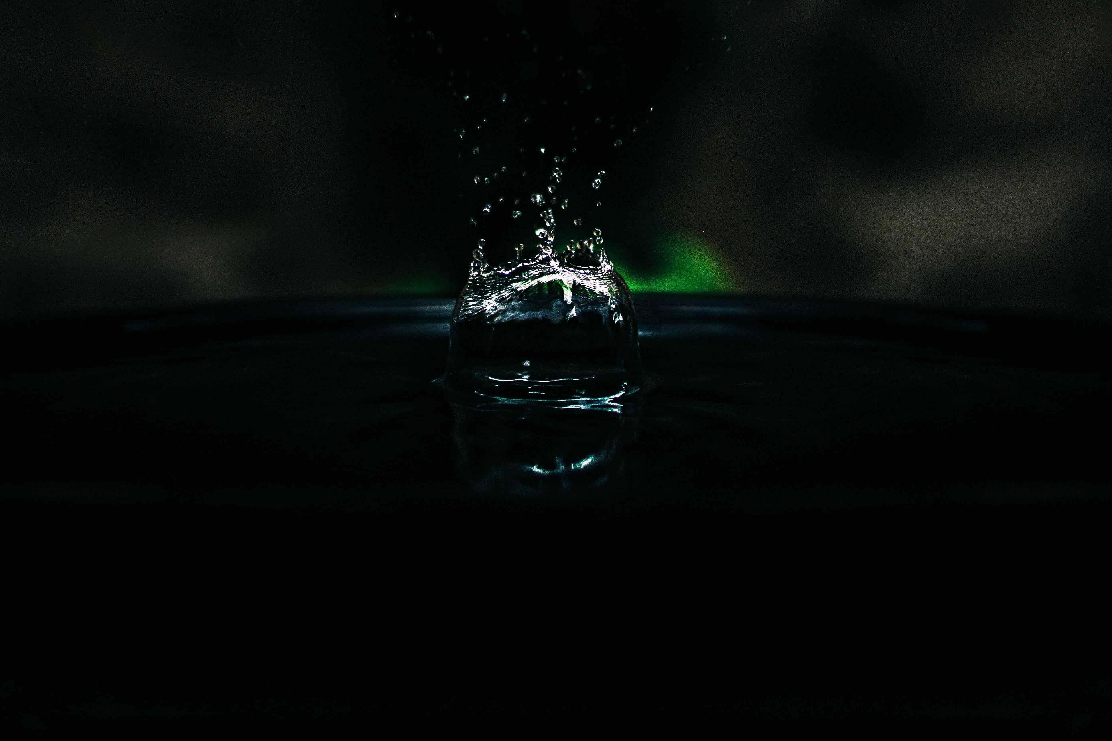 Animal splashes in still water causing ripples